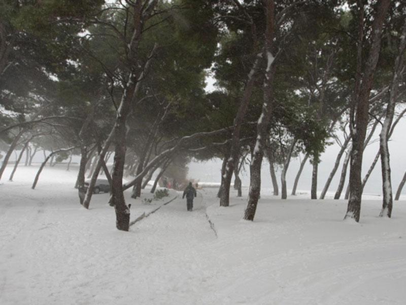 snijeg_070212_2_800.bin