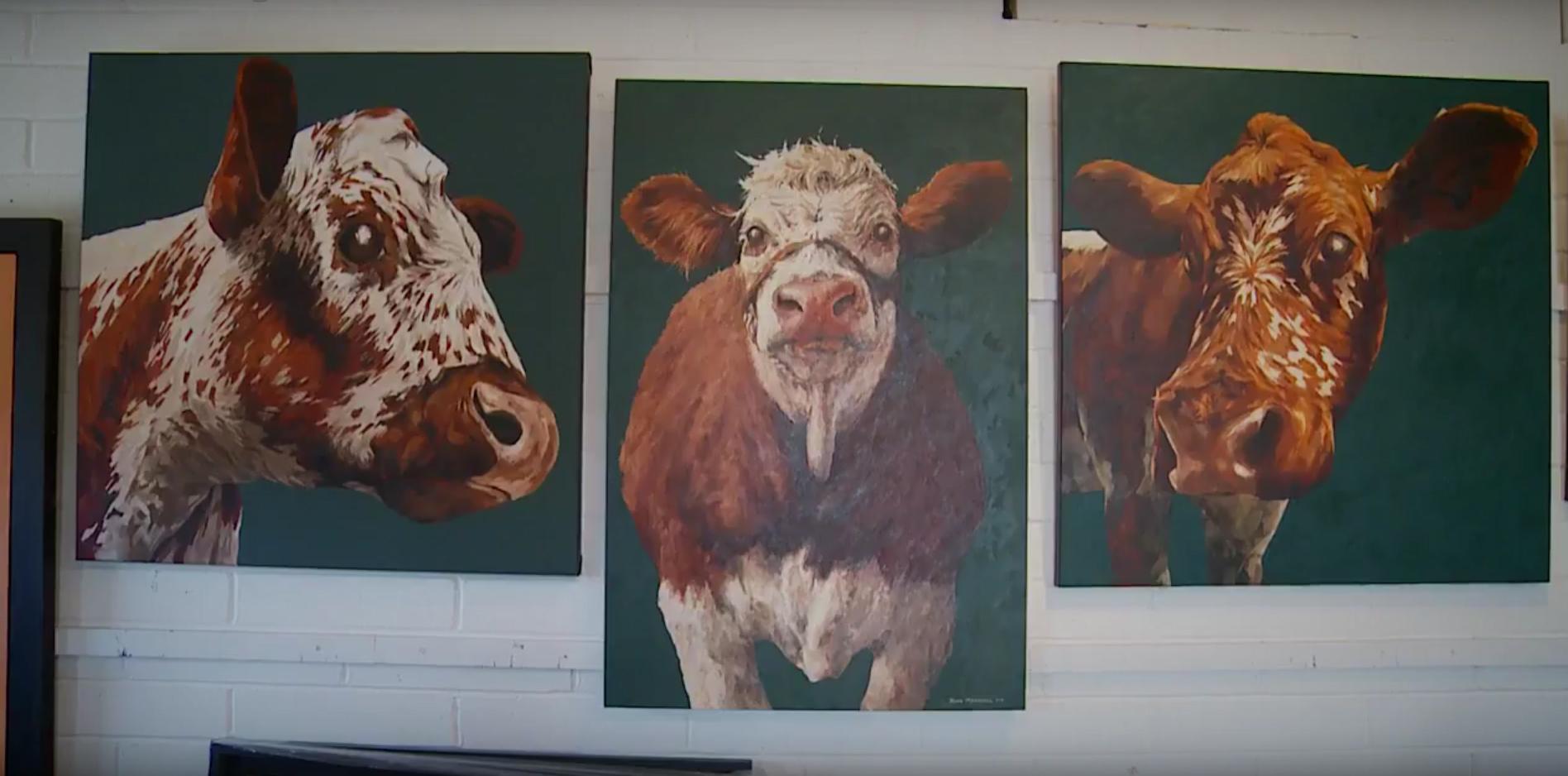 John-Marshall-krave