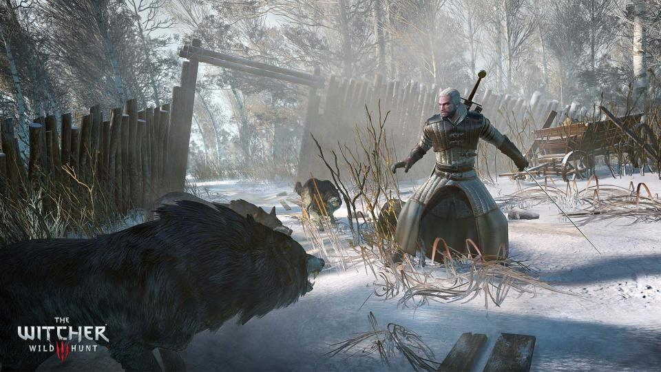 the-witcher-3-wild-hunt_1-2.bin