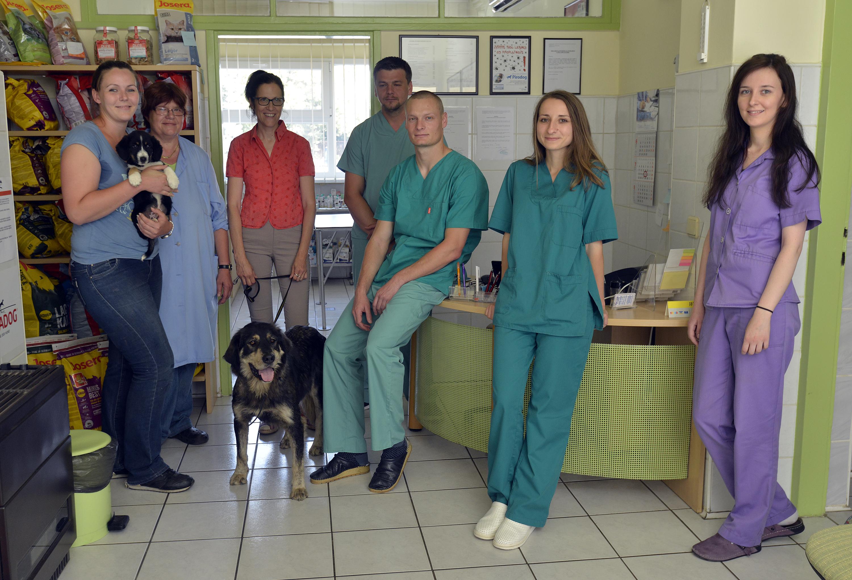 Na fotografiji Sanja Večerić, Dušanka Antonović, Aleksandra Hampamer, Mario Možanić, Igor Igrec, Dragana Kos i Tatjana Globar.