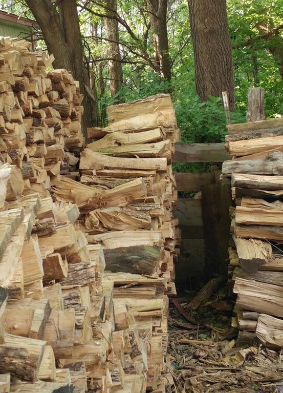 drva macka