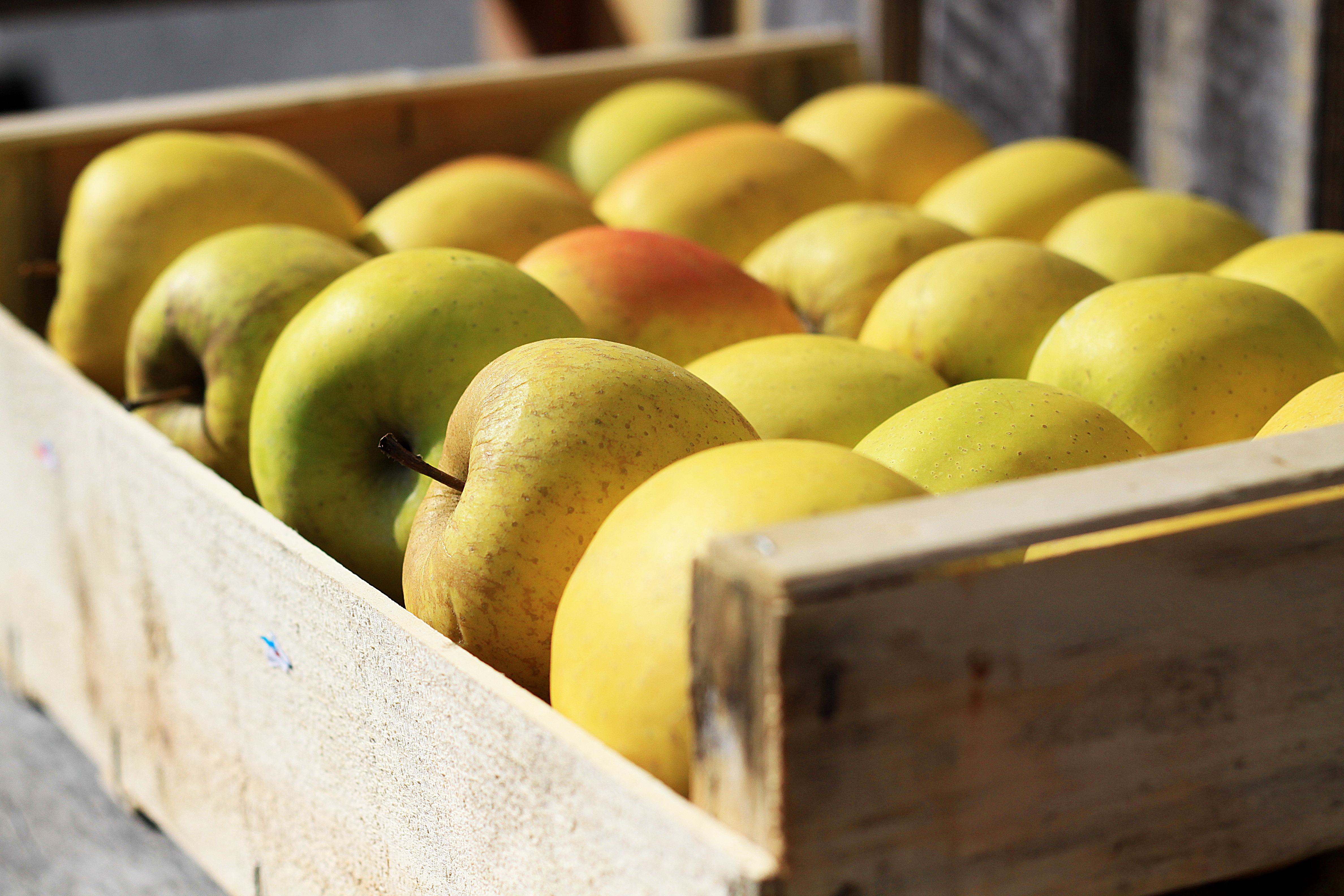 Close up of golden delicious apples in box