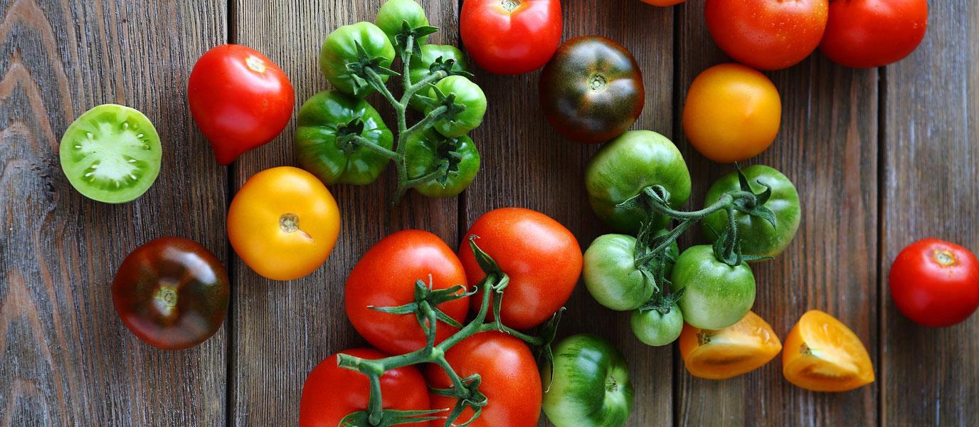 tomaten_bunt_titel.bin