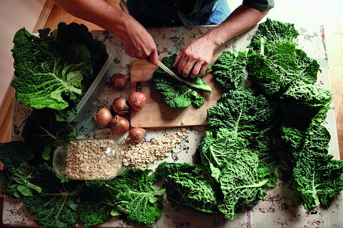 Art of raw food za Dobru hranu Photo&copyright Mario Kucera    mario_kucera@yahoo.com