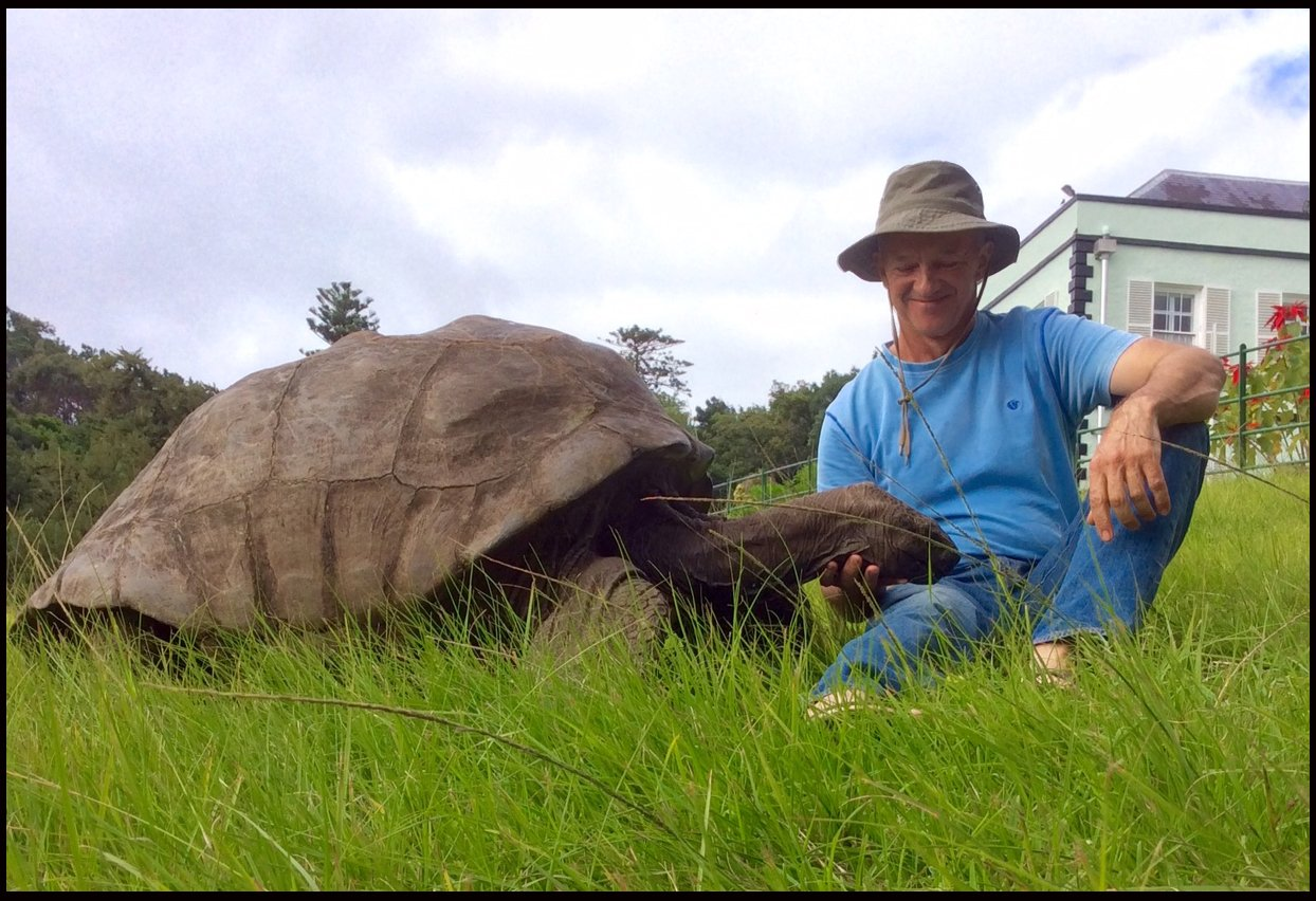 The world's oldest living animal has been given a new lease of life after a vet put him on a healthy diet - at the age of 183.  It was feared Jonathan the giant tortoise was on his last legs after his health seriously declined due to losing his eyesight and sense of smell.  But now the famous resident on the British outpost of St Helena Island has started coming out of his shell again thanks to vet Dr Joe Hollins., Image: 270835705, License: Rights-managed, Restrictions: , Model Release: no, Credit line: Profimedia, BNPS