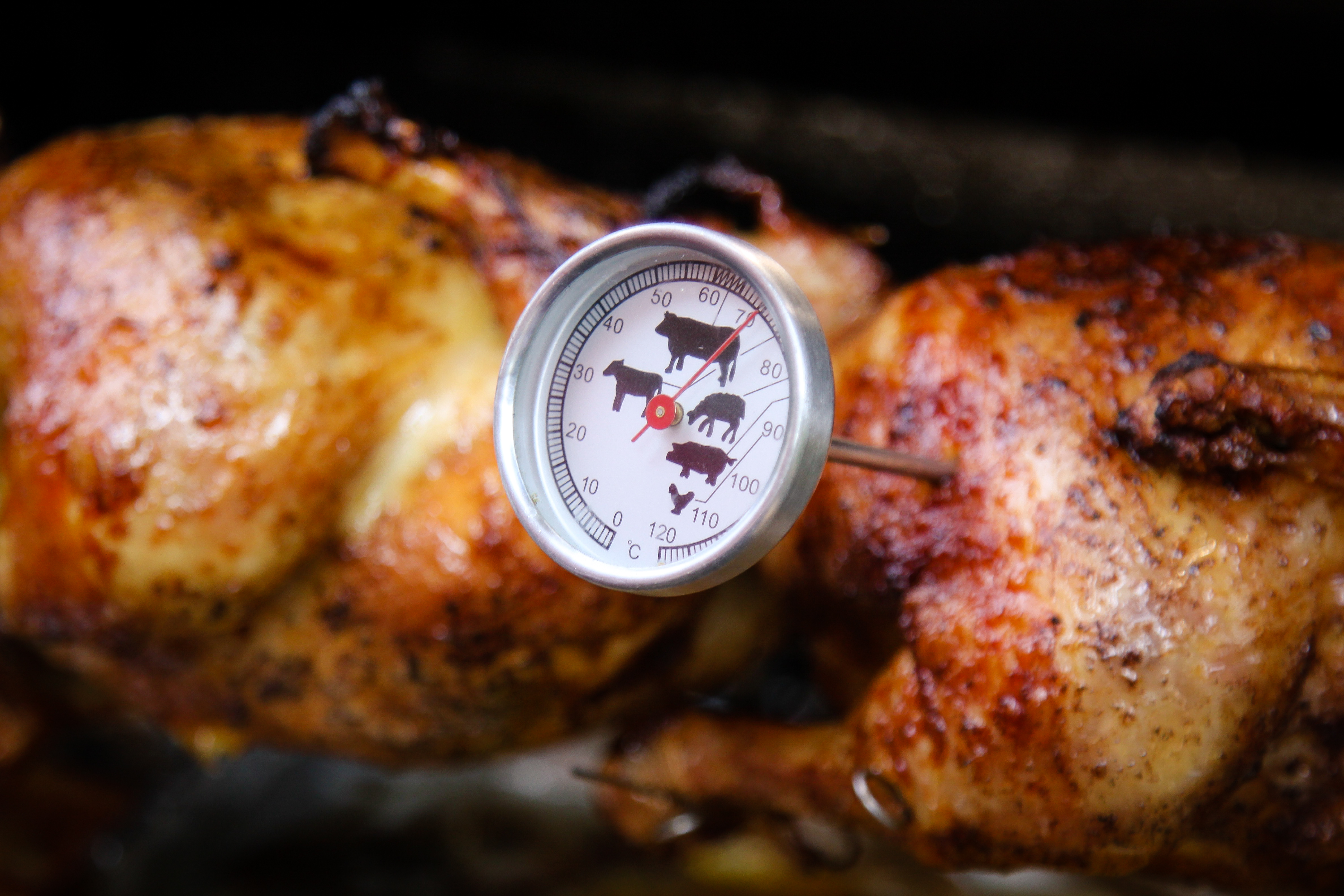 Grilled chicken and meat thermometer
