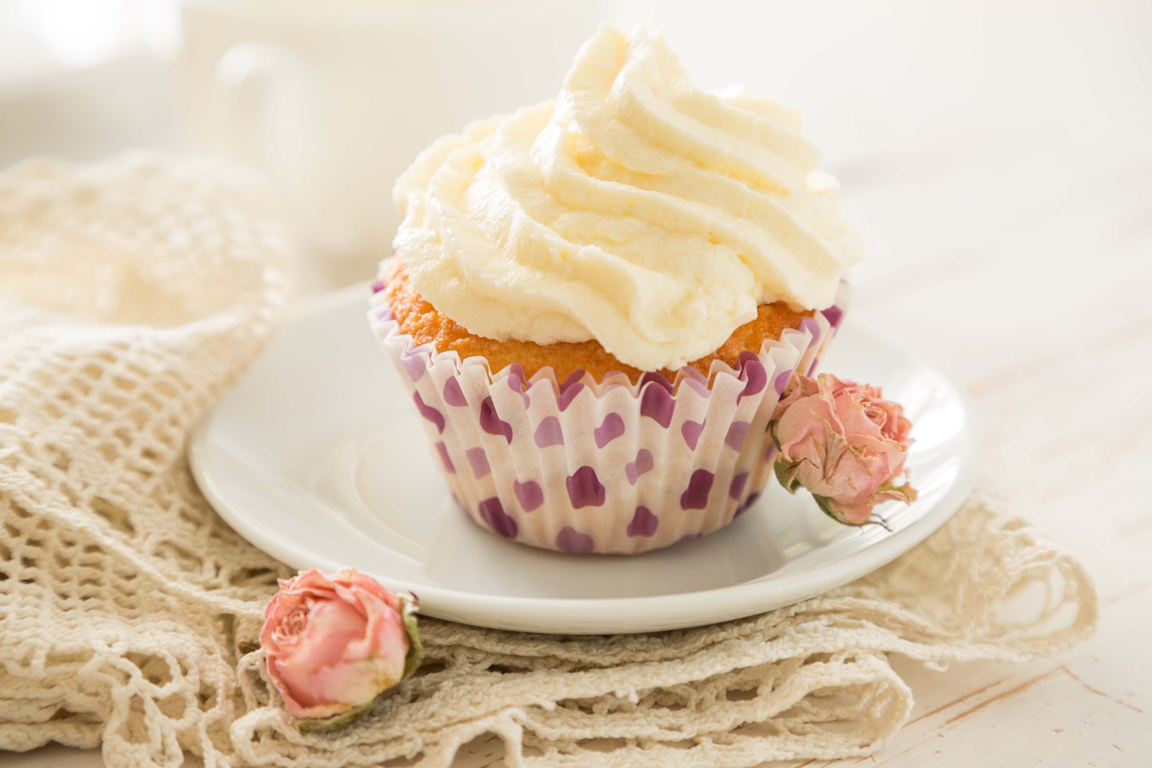 Vanilla cupcake on wood background, copy space