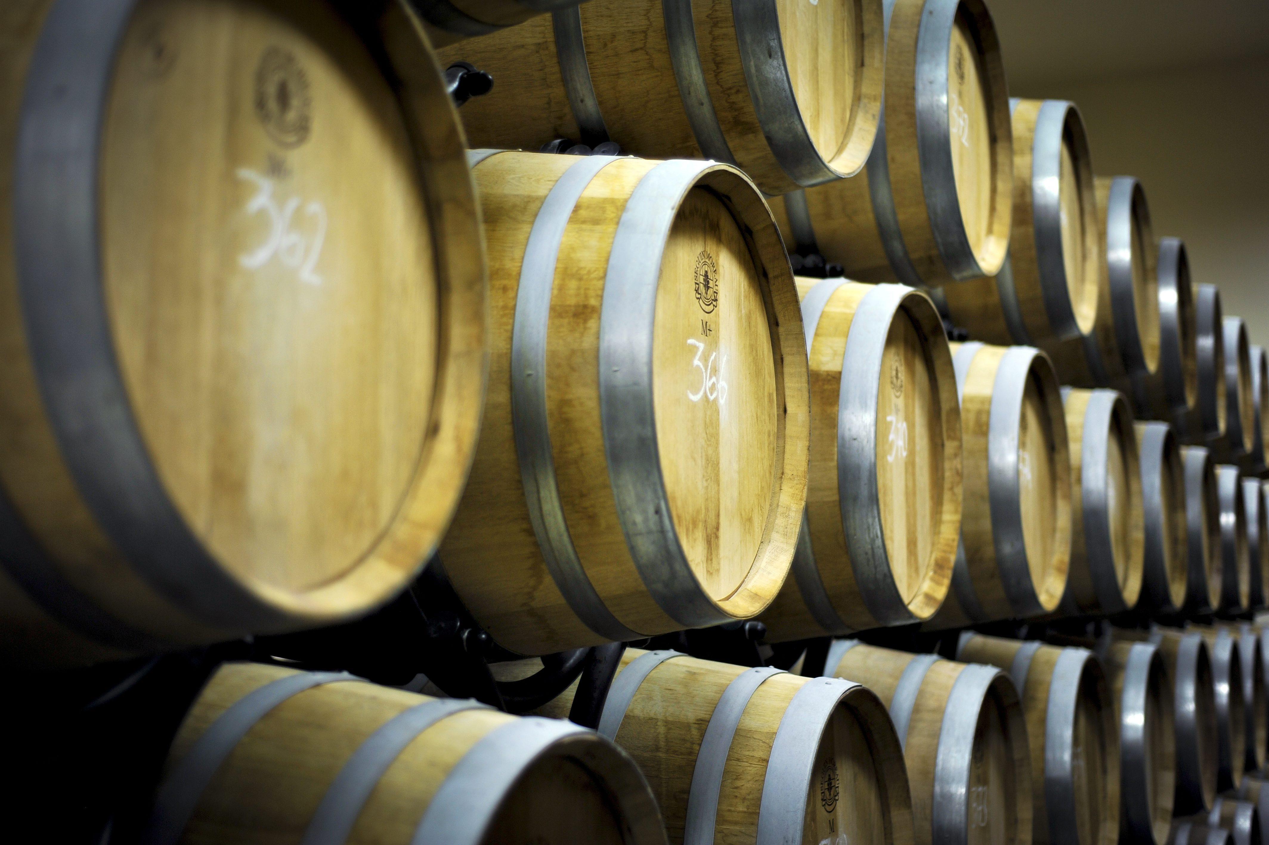 Vinski podrum vinarije tvrtke Agrolaguna