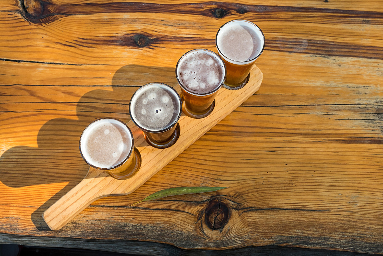 craft brewery_cover_profimedia-0312341513