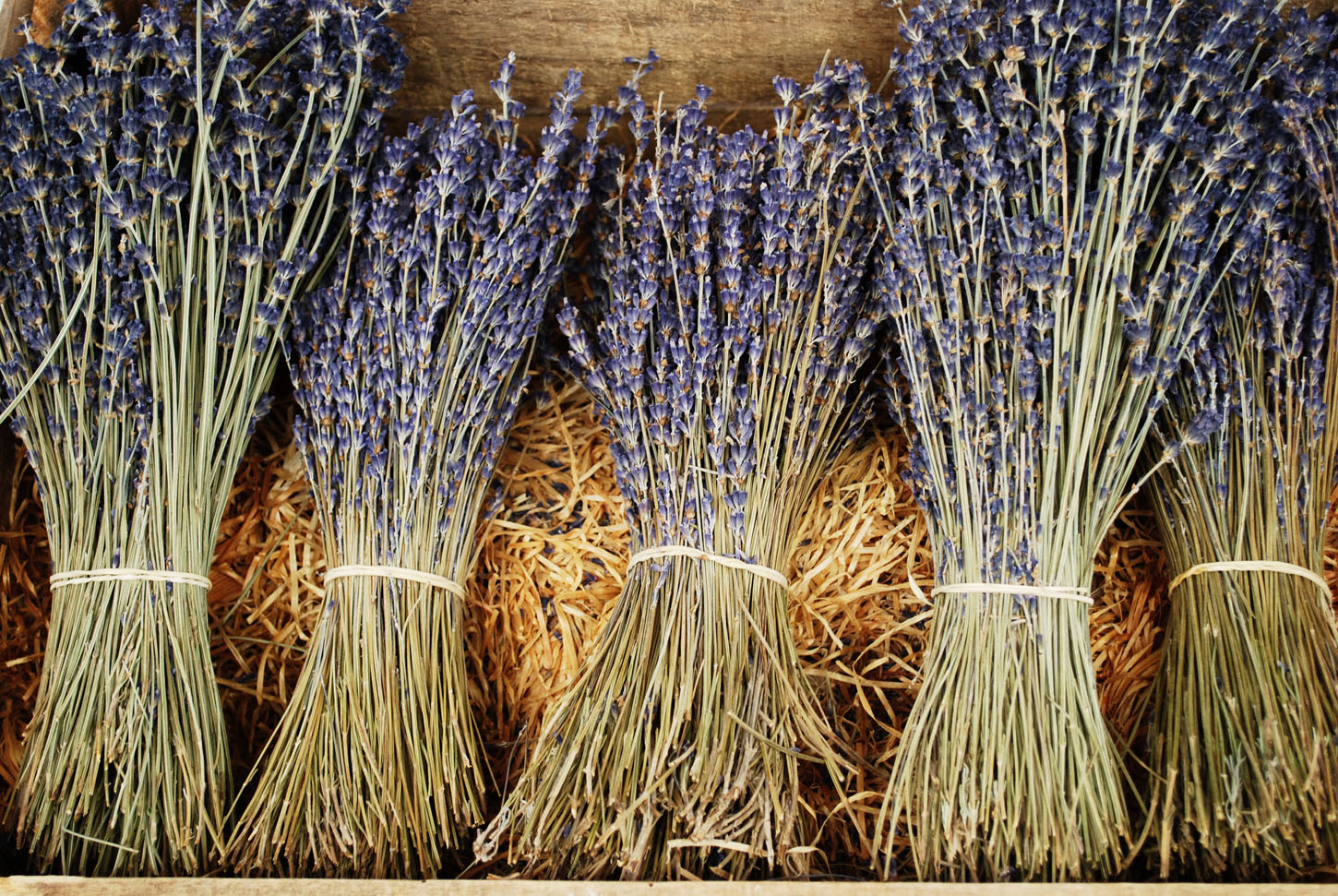 Bunches of dried lavender flowers for sale in Provence, France, Image: 152602099, License: Royalty-free, Restrictions: , Model Release: no, Credit line: Profimedia, Alamy