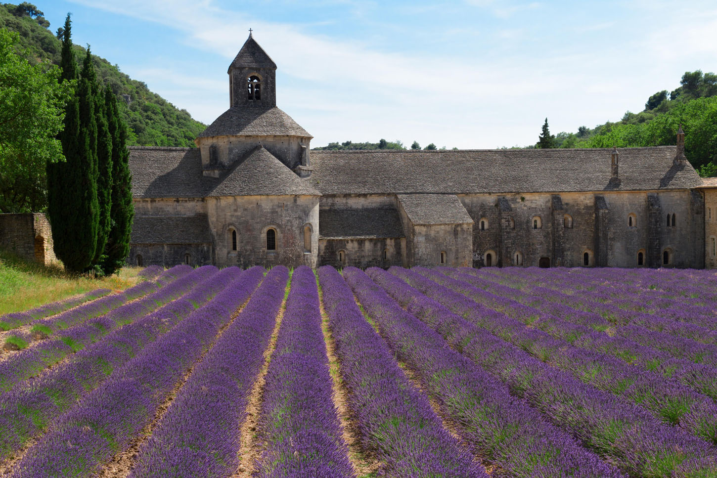 Abbey Senanque building and blooming Lavender field, France, Image: 321729113, License: Royalty-free, Restrictions: , Model Release: no, Credit line: Profimedia, Alamy