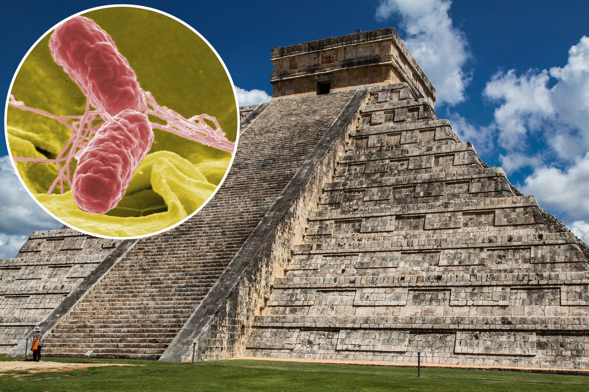 asteci bakterije
