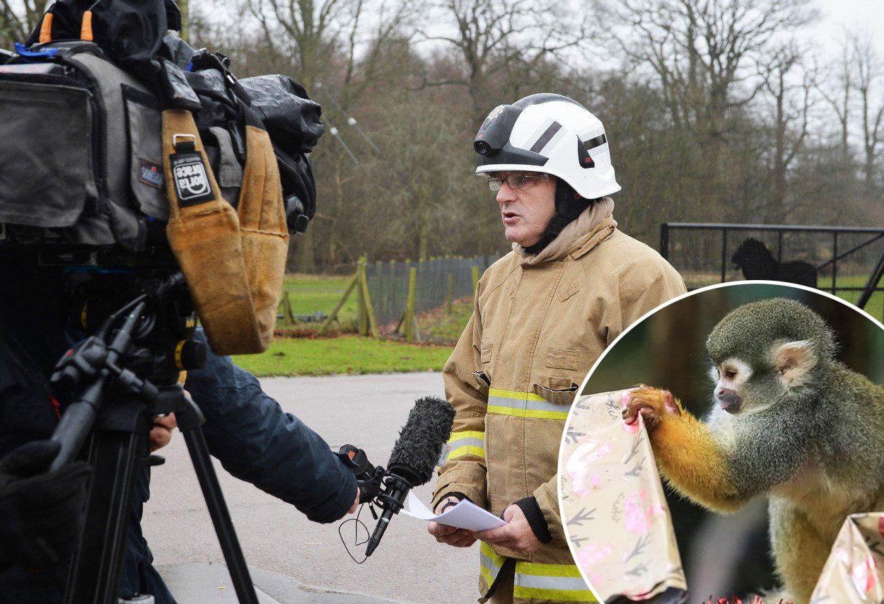Woburn Safari Park, vatrogasac daje izjavu nakon požara u kojem je stradalo 13 majmuna. U krugu: Fotografija koju su u ovom parku objavili tjedan dana prije požara