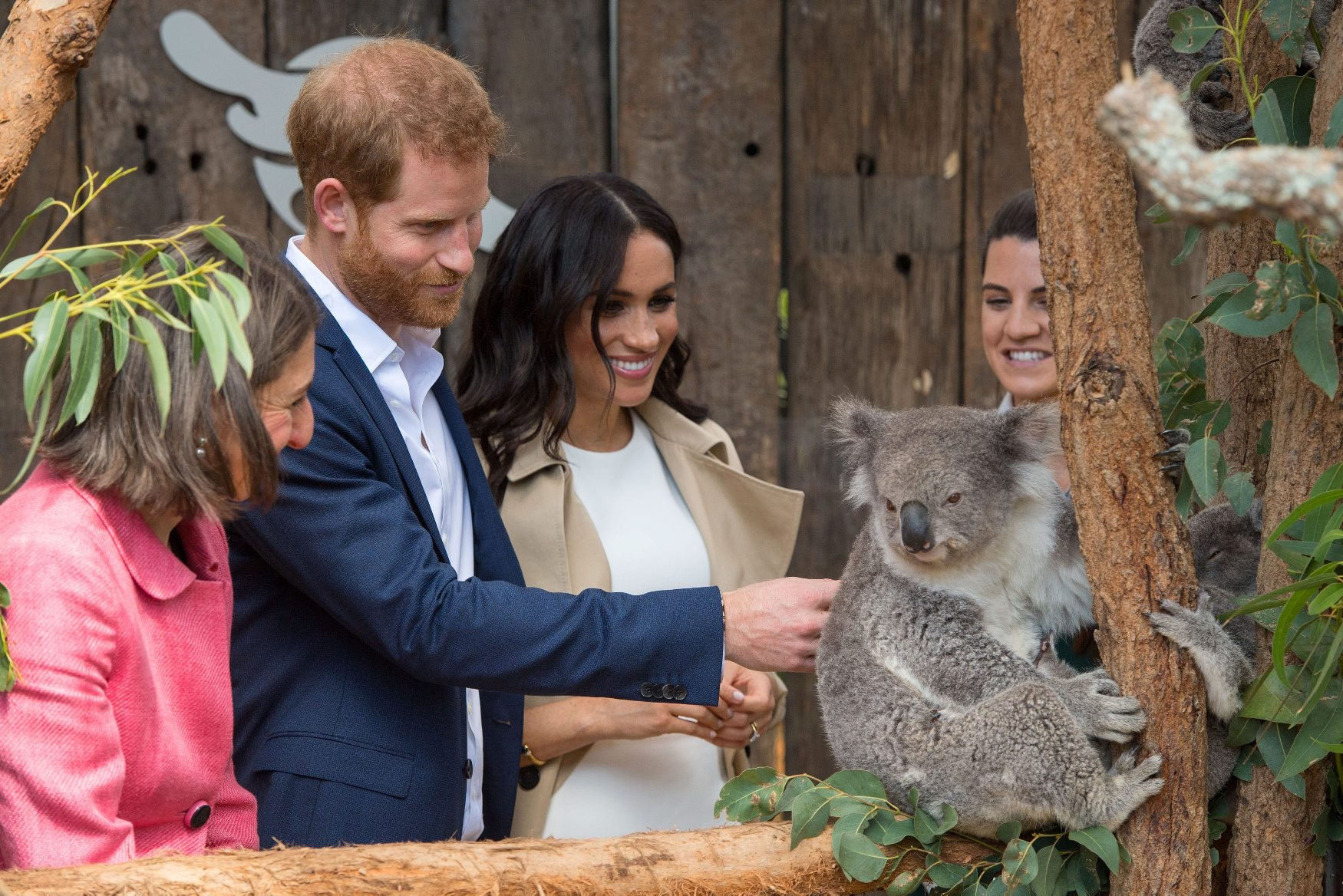 The Duke and Duchess of Sussex meet a Koala called Ruby during a visit to Taronga Zoo in Sydney on the first day of the Royal couple's visit to Australia October 16, 2018. Harry and Meghan will take part in 76 engagements in Australia, Fiji, Tonga and New Zealand over their 16-day trip to the Pacific region. Dominic Lipinski/Pool via REUTERS
