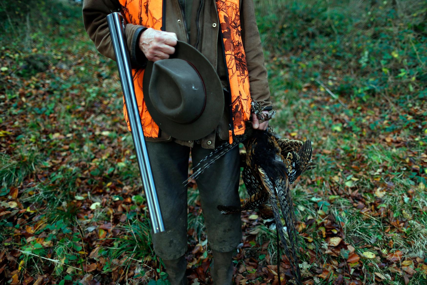 Lovac s fazanom, ilustracija