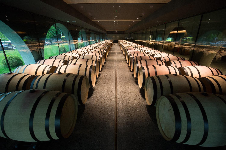 Nova vinarija Galić u Kutjevu