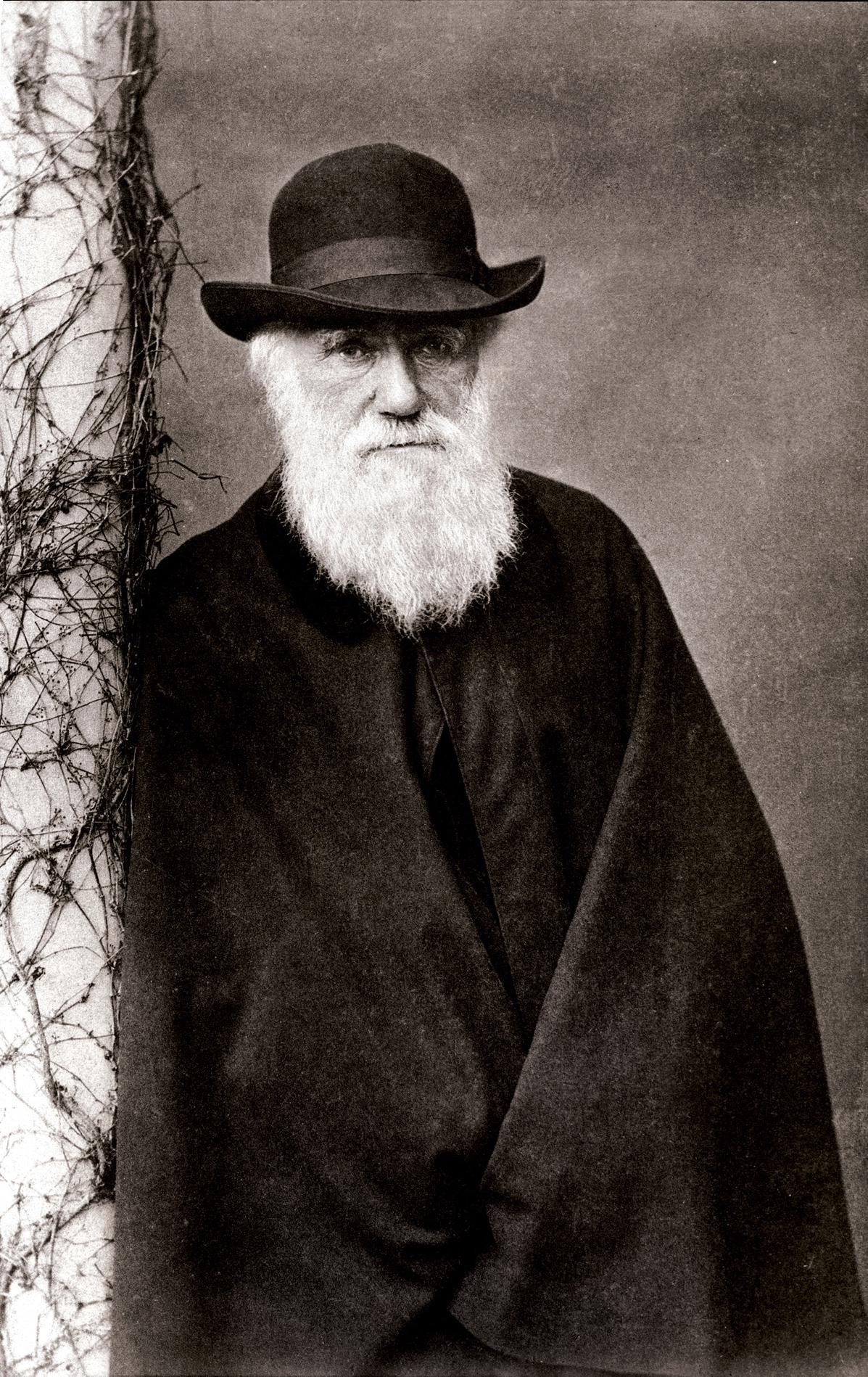 Darwin_1881