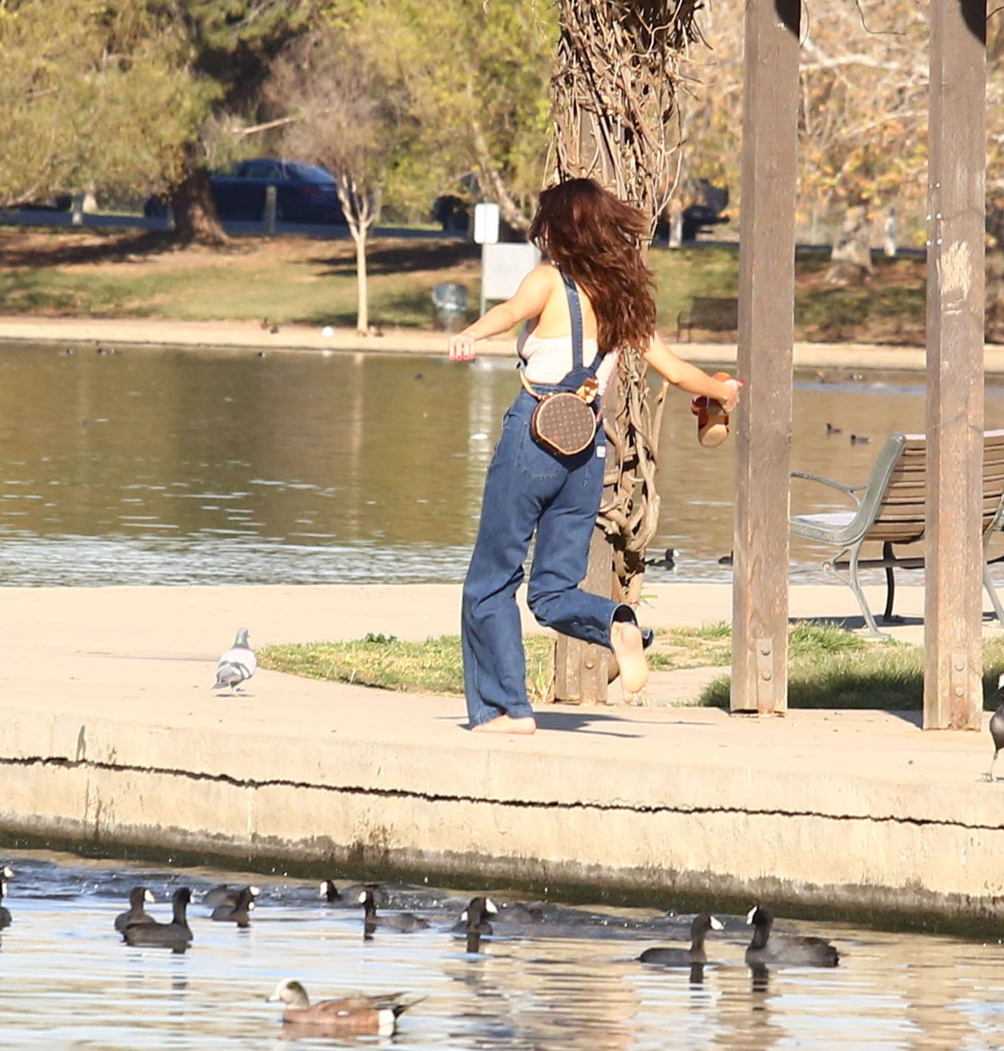 Selena Gomez and friends dropped by a park in Studio City.  The actress wore flare-bottomed overalls, dipping her toes in the water and feeding the ducks, on Friday, February 2, 2018  X17online.com