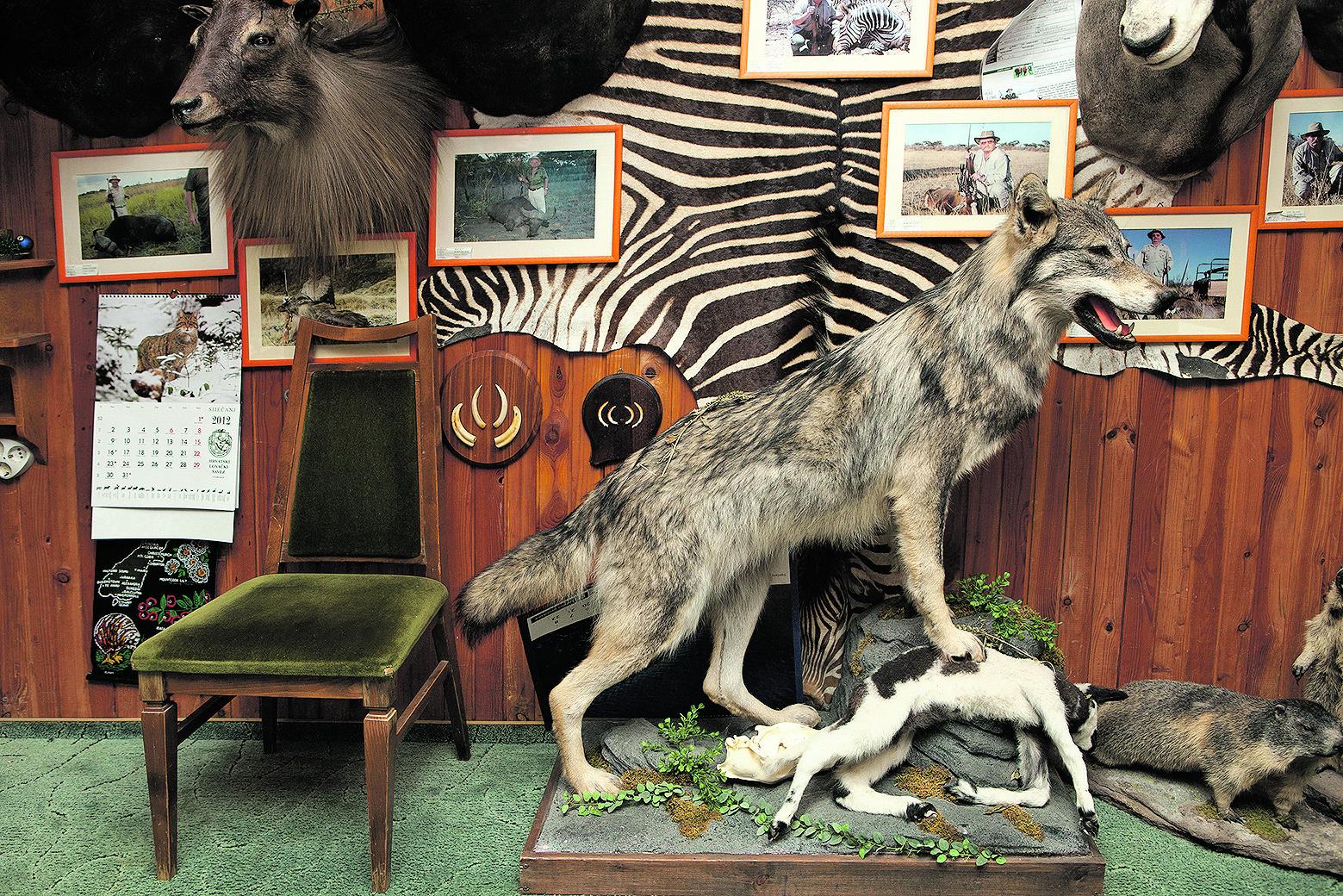 trofejna soba pag 2012 fotografija ivan posavec