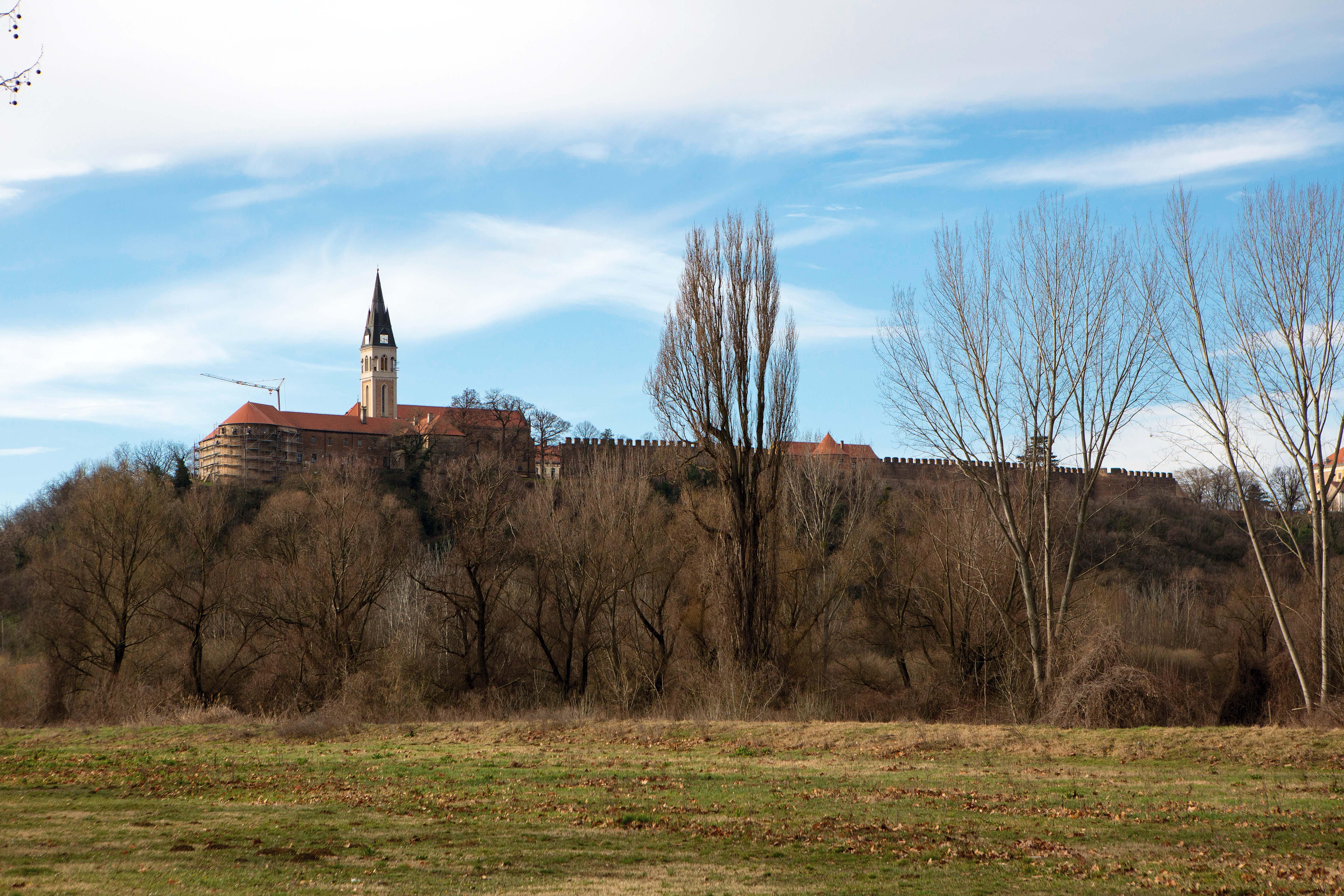 Sa zvonika samostana pruža se pogled na Srijem i Bačku