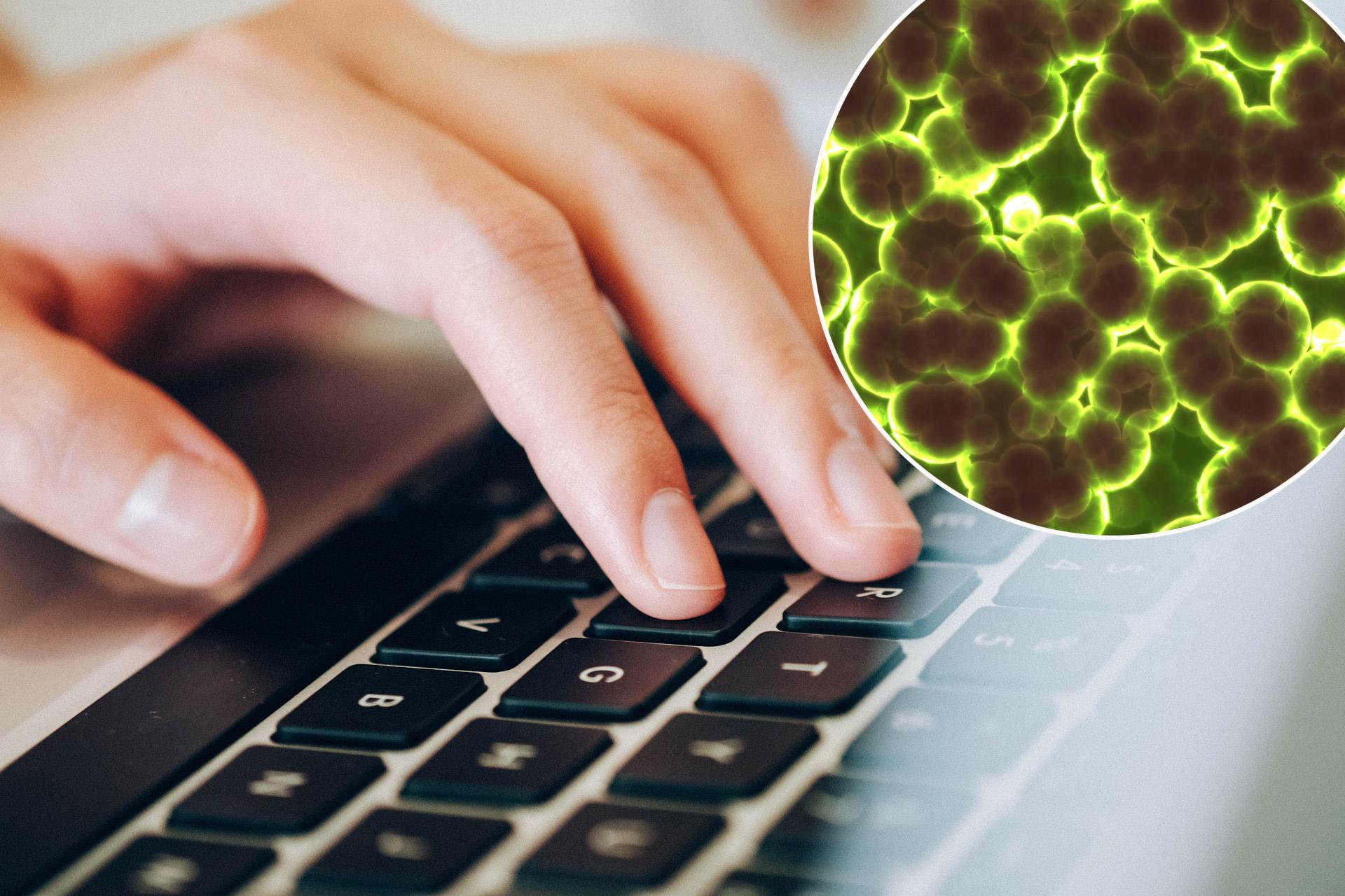 tipkovnica bakterije
