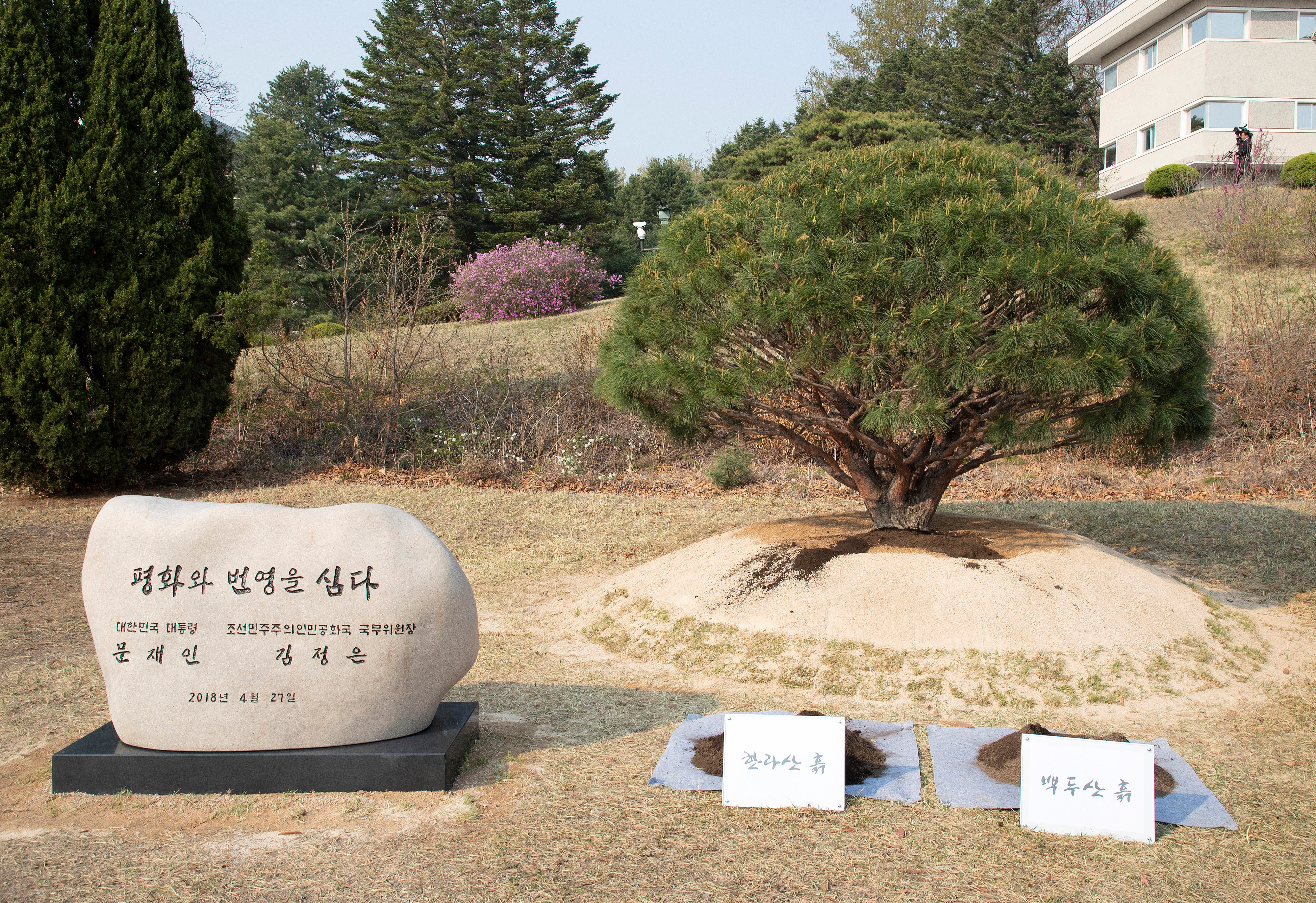 A plaque and a tree planted by South Korean President Moon Jae-in and North Korean leader Kim Jong Un at the truce village of Panmunjom inside the demilitarized zone separating the two Koreas, South Korea, April 27, 2018.   Korea Summit Press Pool/Pool via Reuters - RC1A46646D80