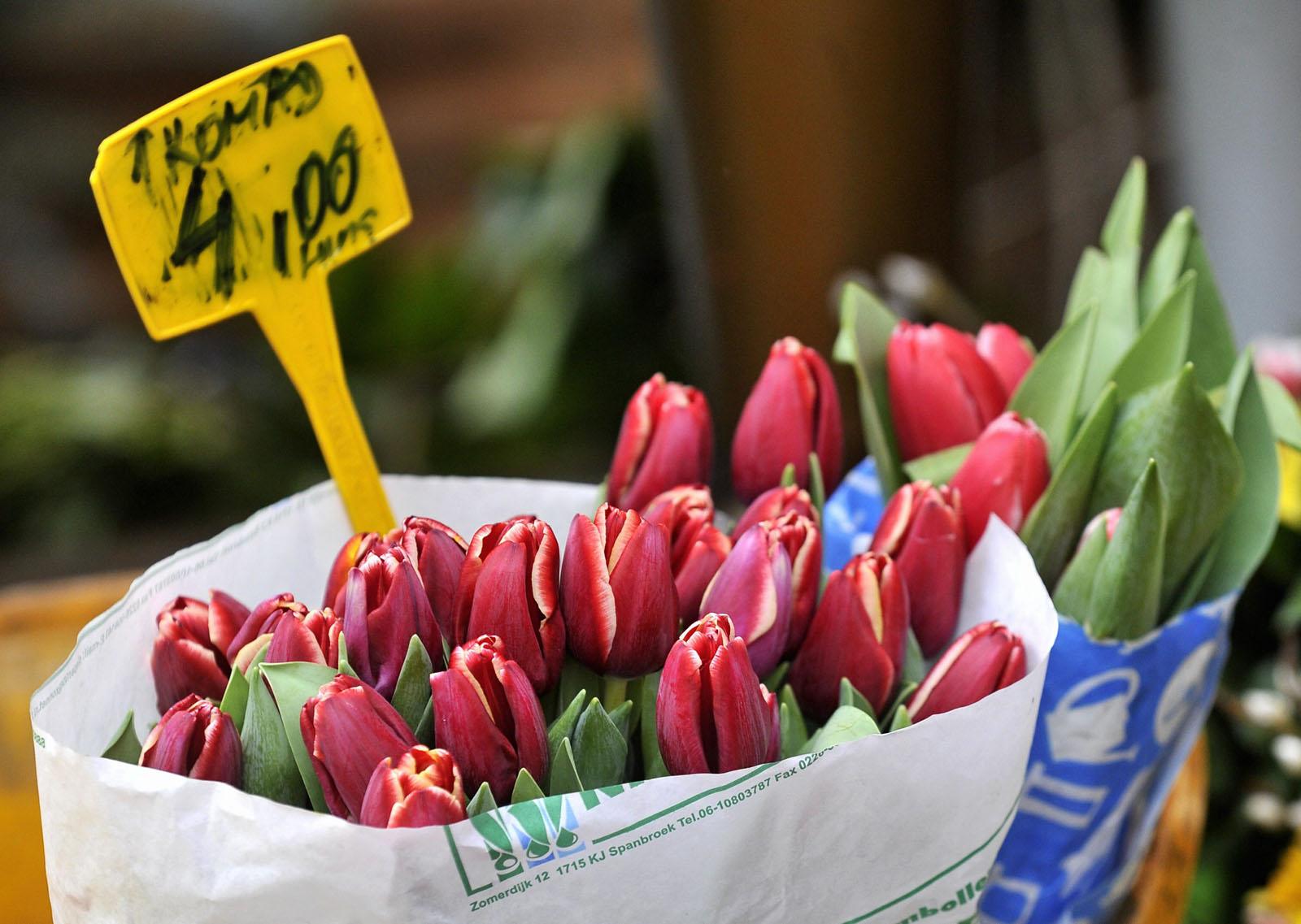 Zagreb, 080214.   Dolac.  Zive boje vratile su se u grad. Proljetnice svih boja izazvale cu interes mnogih prolaznika. Zumbuli, tulipani,  narcisi, macuhice, mimoze te razno drugo cvijece ove je subote razveselilo mnoge stanovnike Zagreba i osvjezilo mnoge stanove.  Foto: Srdjan Vrancic / CROPIX
