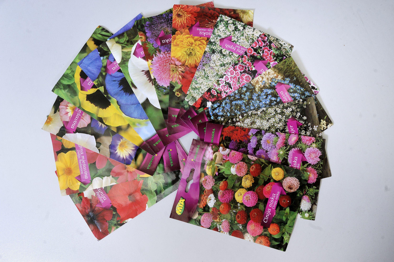 cvijece_mia3-030518