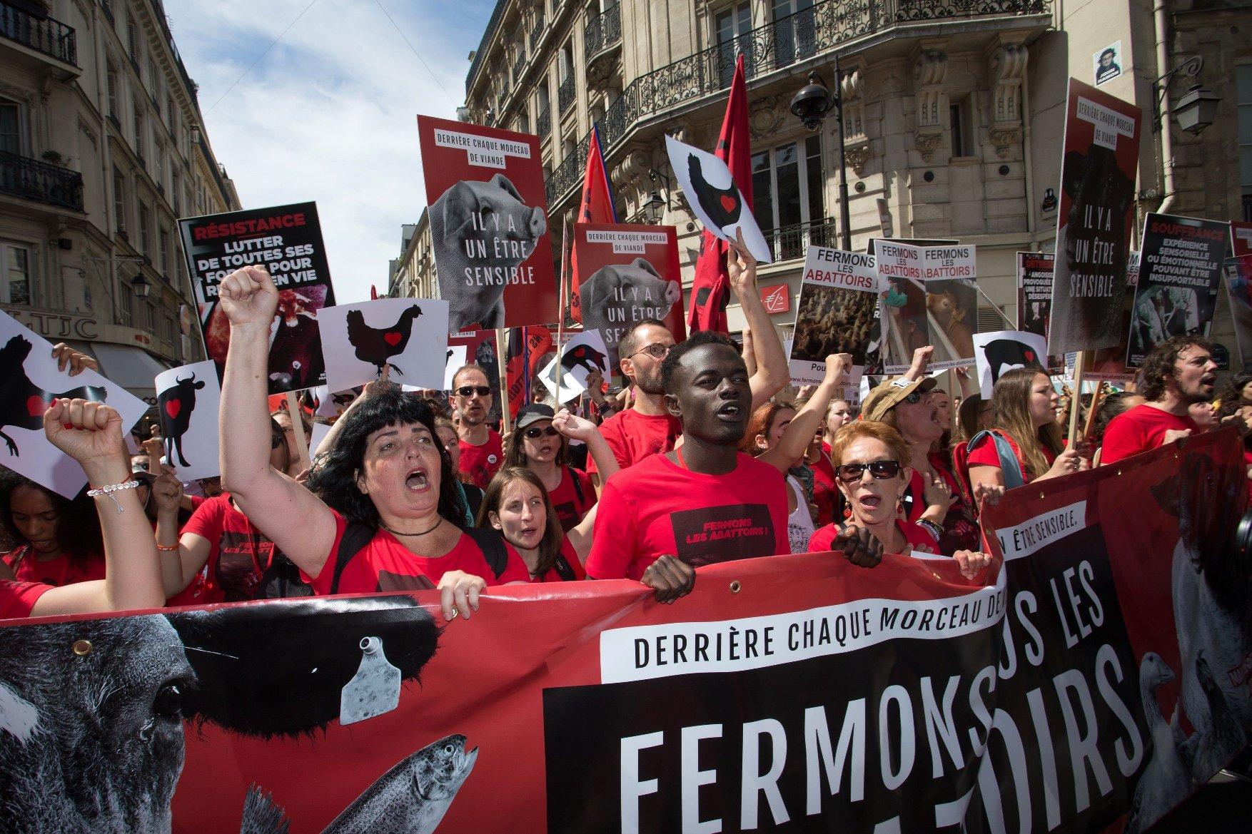 Francuski vegani na prosvjedu protiv klanja životinja, arhivska fotografija