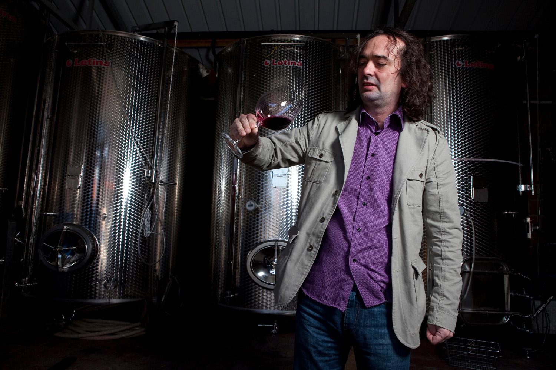 Dobra Hrana - DOBRI CRNJACI: Iločki vinogradi u kategoriji