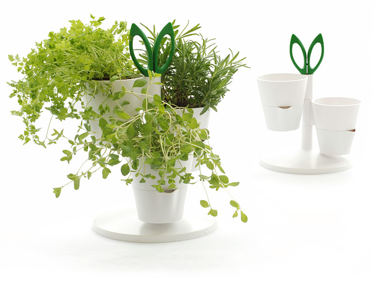 HERB STAND1