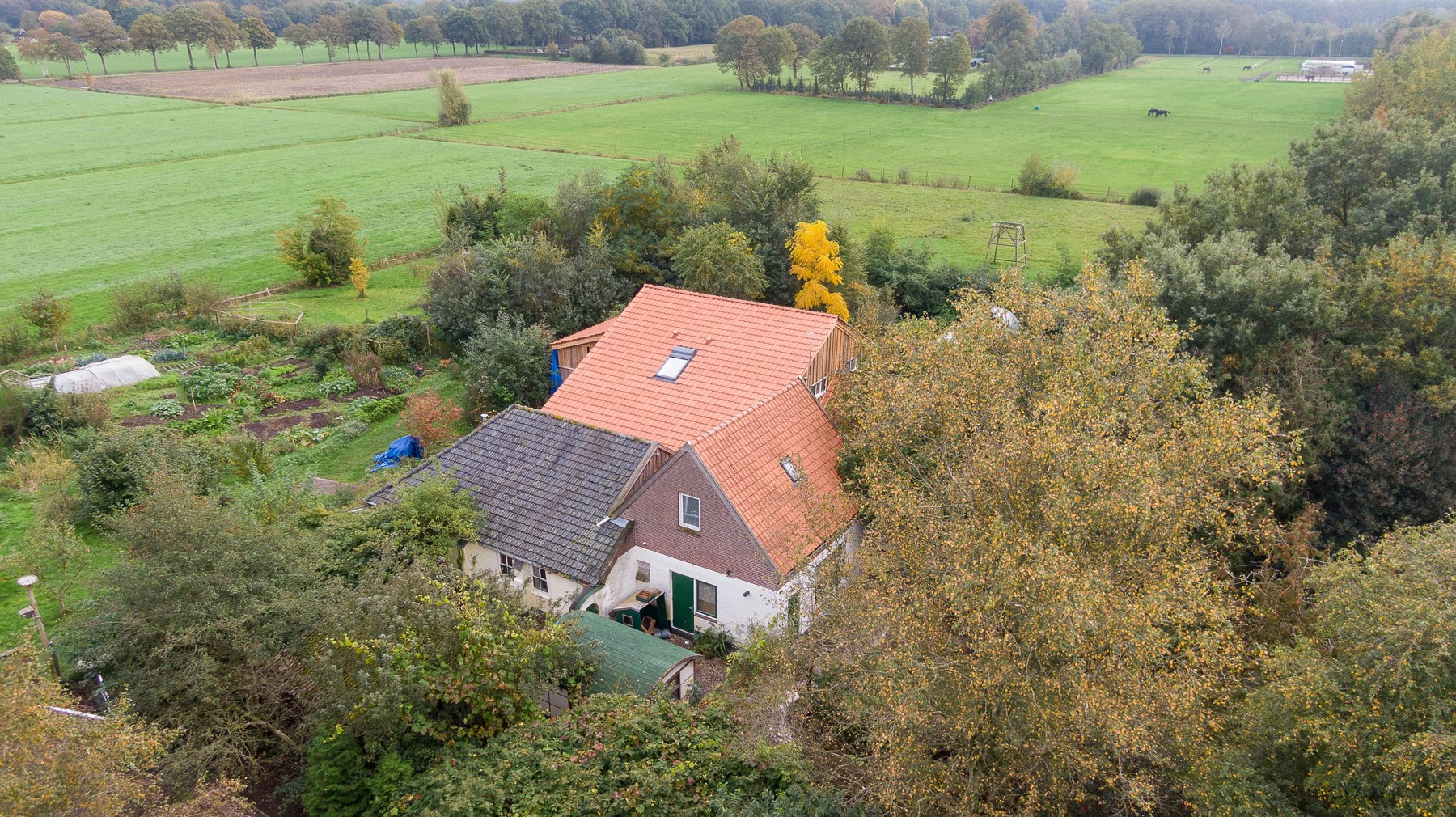 An aerial picture taken on October 15, 2019 shows a view of the farm, where a father and six children had been living in the cellar, In Ruinerwold, northern Netherlands. The family lived in the cellar for years and where waiting for 'the end of time'., Image: 476916827, License: Rights-managed, Restrictions: Netherlands OUT, Model Release: no, Credit line: Wilbert Bijzitter / AFP / Profimedia