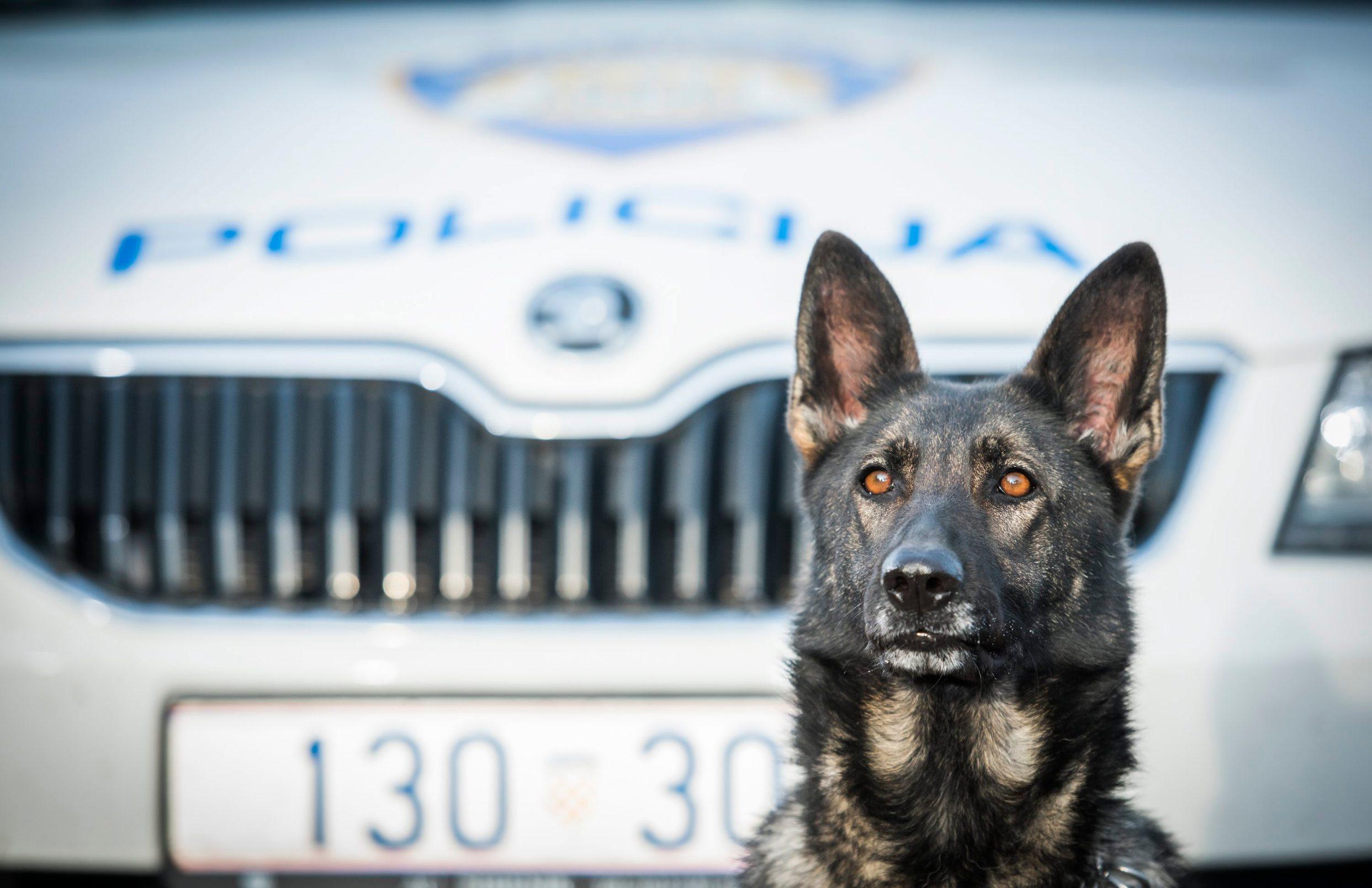 policijski pas Aria