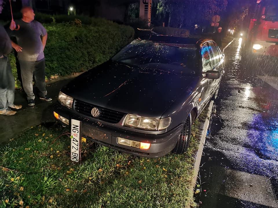 Stablo se srušilo na auto u Novoj Gradišci