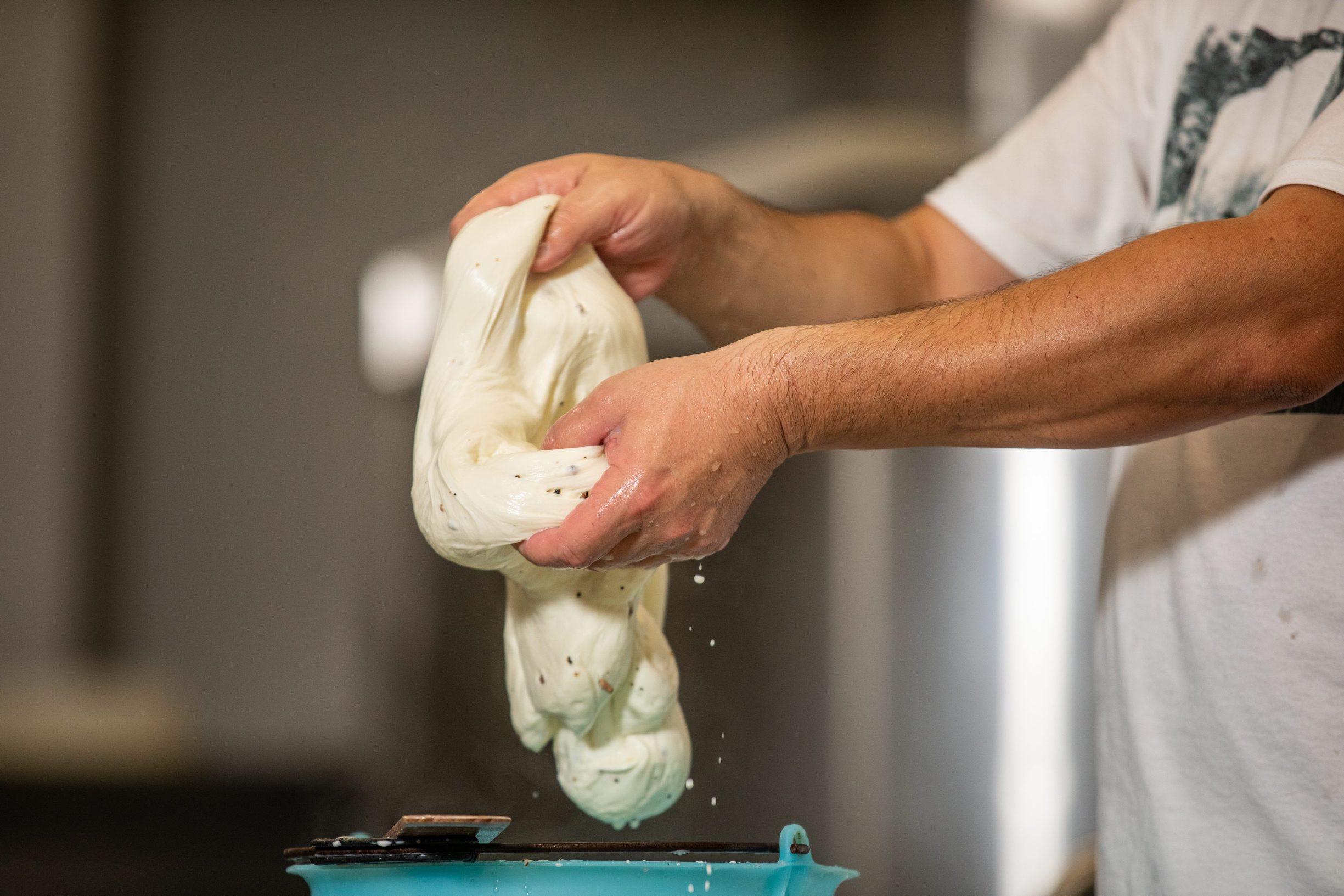 Zminj, 031019. Proizvodnja mozzarelle u Mljekari Latus. Na fotografiji: rucno oblikovanje mozzarelle s tartufima. Foto: Matija Djanjesic / CROPIX