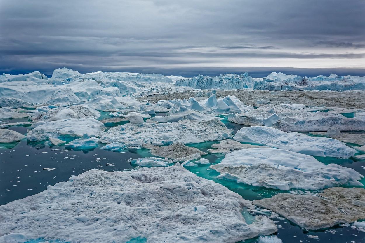Arktik, arhiva