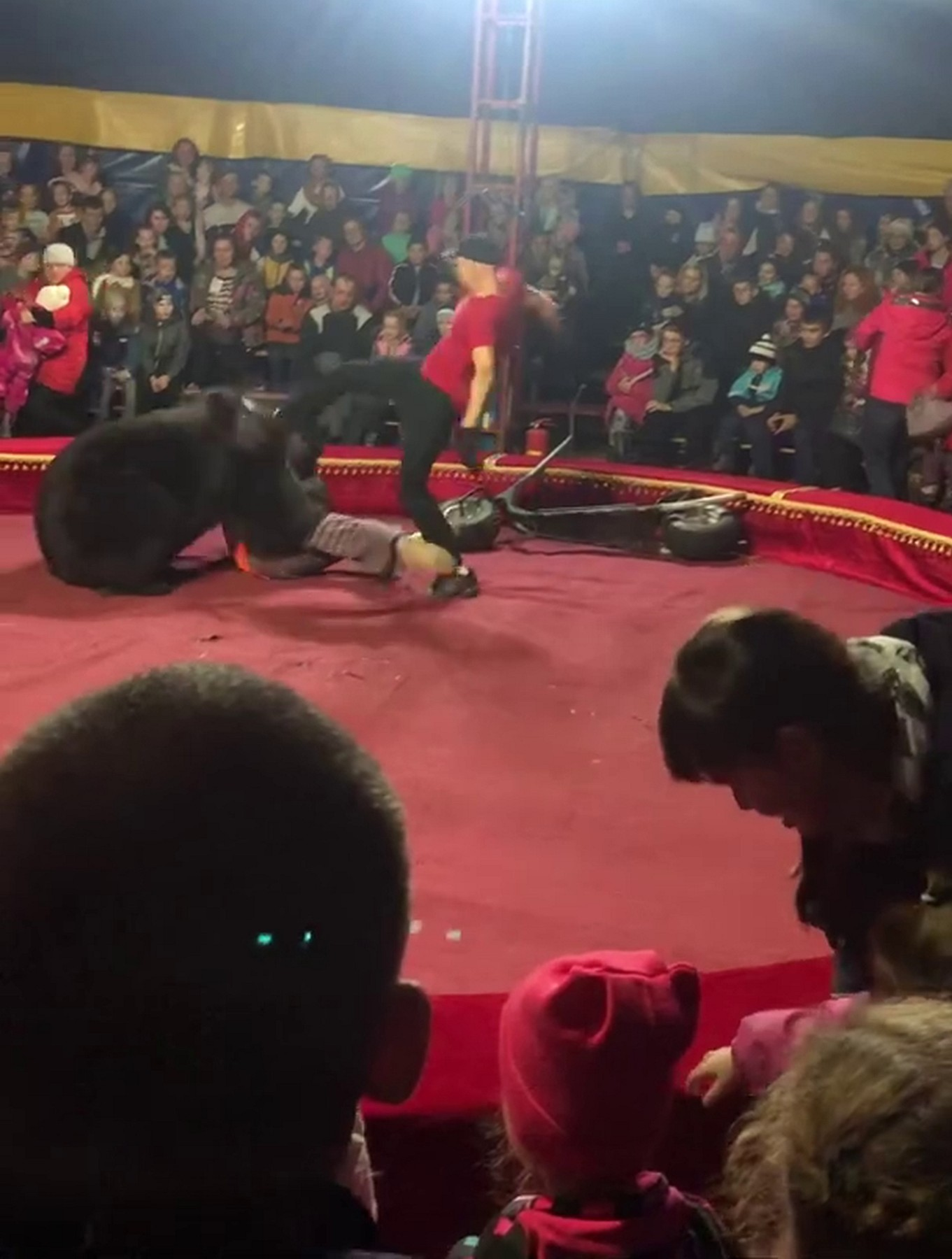 Bear attacked the trainer during the performance in the tent circus in Olonets town of Karelia republic., Image: 478855302, License: Rights-managed, Restrictions: , Model Release: no, Credit line: Anna Liesowska / east2west news / East2West News / Profimedia