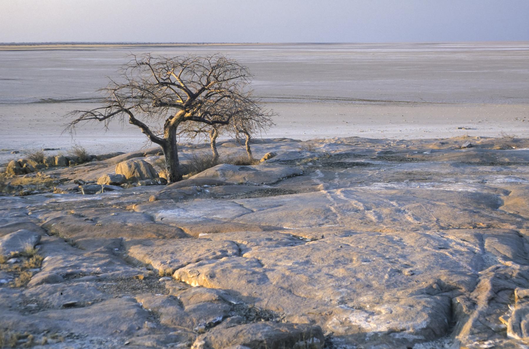 Makgadikgadi u Bocvani