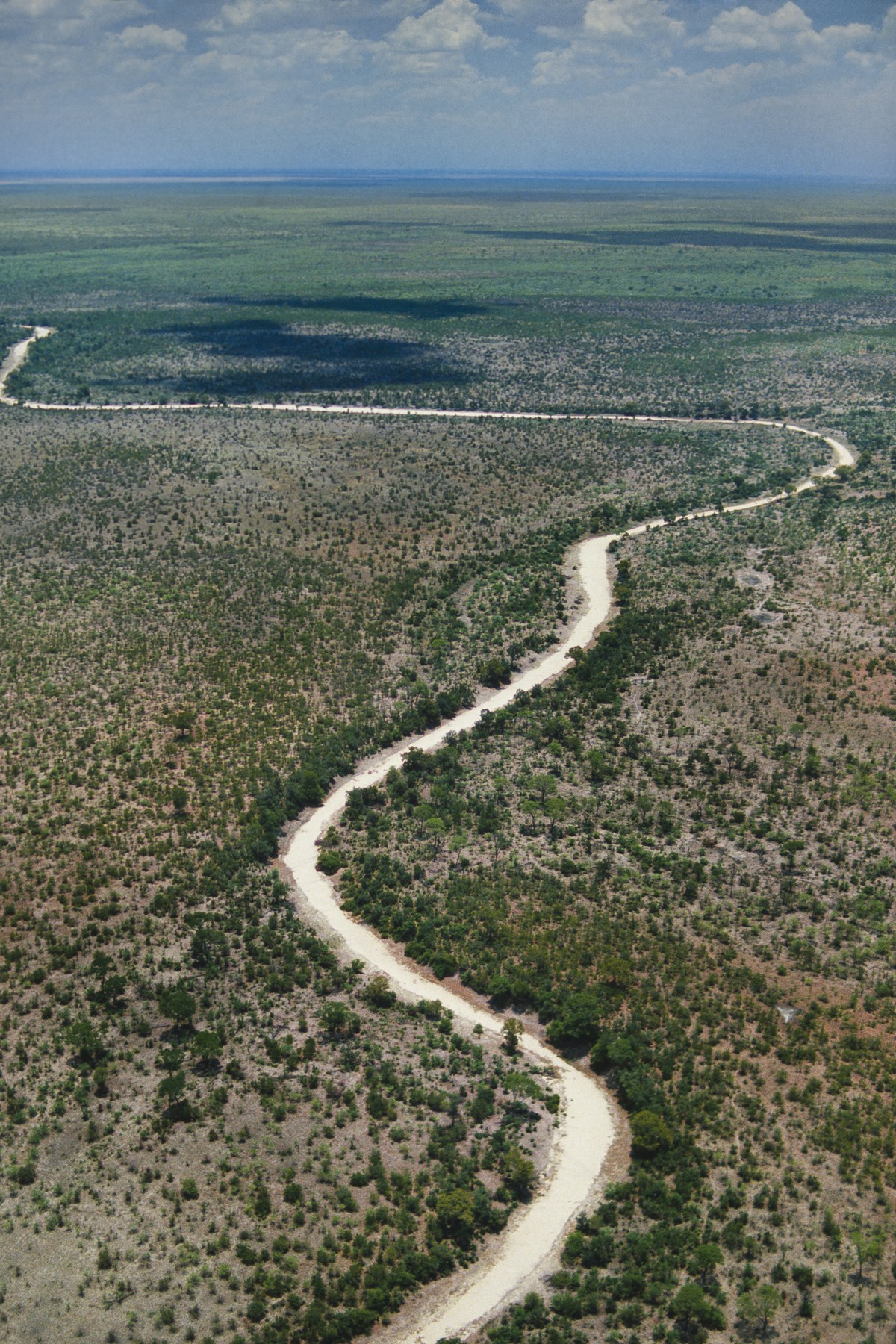 Jan. 14, 2014 - Dry river bed (aerial), Makgadikgadi Pans, Botswana, Image: 198430782, License: Rights-managed, Restrictions: , Model Release: no, Credit line: Frans Lanting / Zuma Press / Profimedia