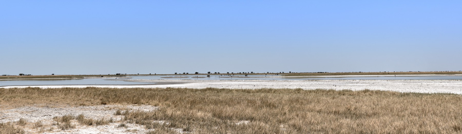 Panoramic of the Nwetwe, Makgadikgadi Pan in Botswana, Image: 409818599, License: Royalty-free, Restrictions: , Model Release: no, Credit line: Rainer Lesniewski / Panthermedia / Profimedia