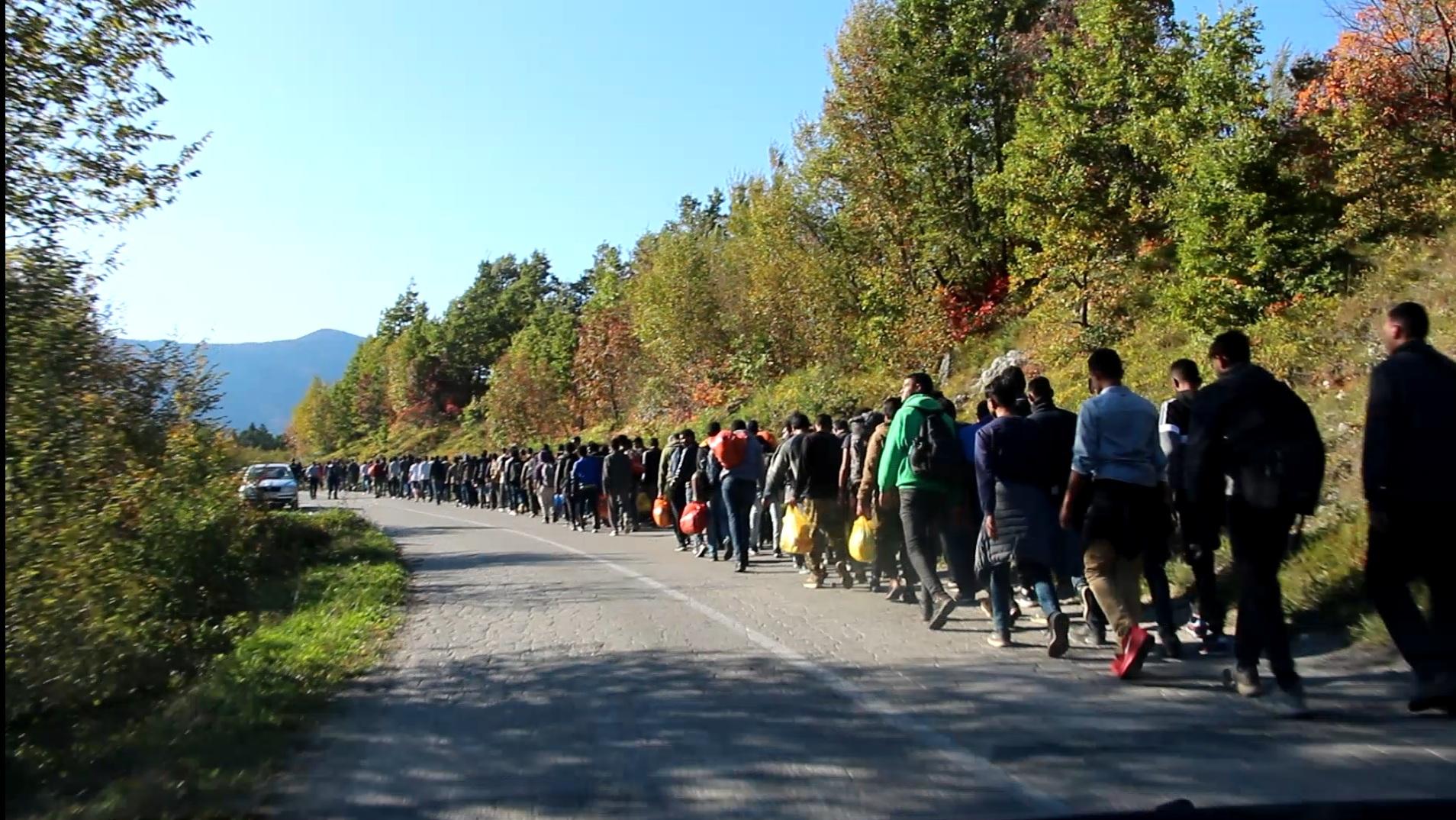 Migranti (arhiva)