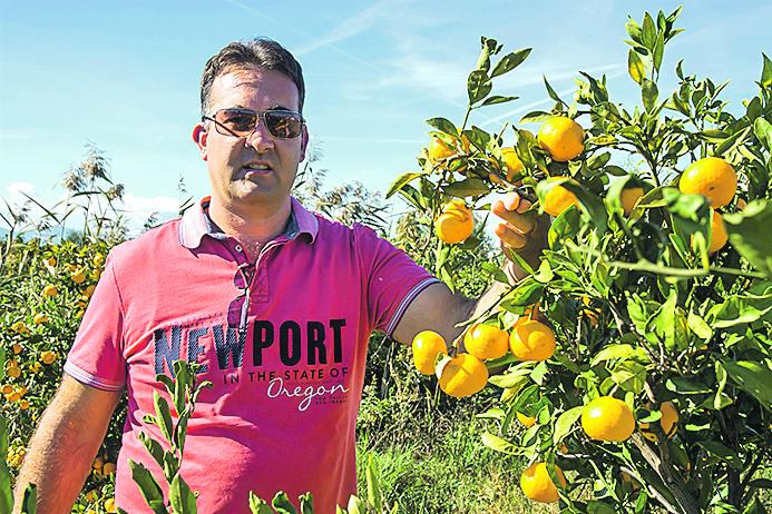 """Željko Bjeliš, predsjednik Udruge proizvođača agruma i povrća """"Neretvanska mladež"""""""
