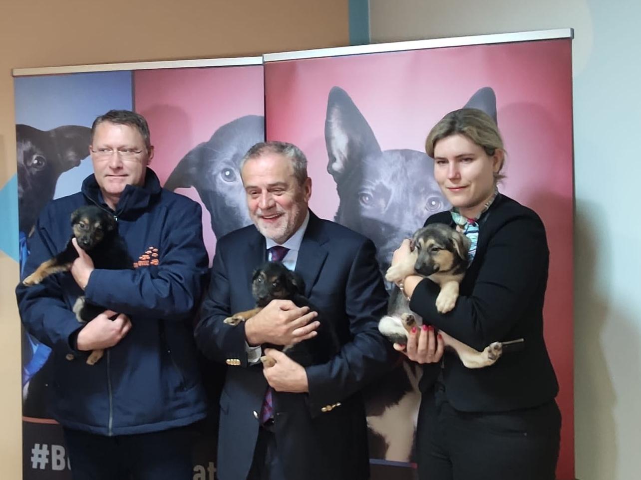Damir Skok, Milan Badić i Lana Rogošić Blagojević