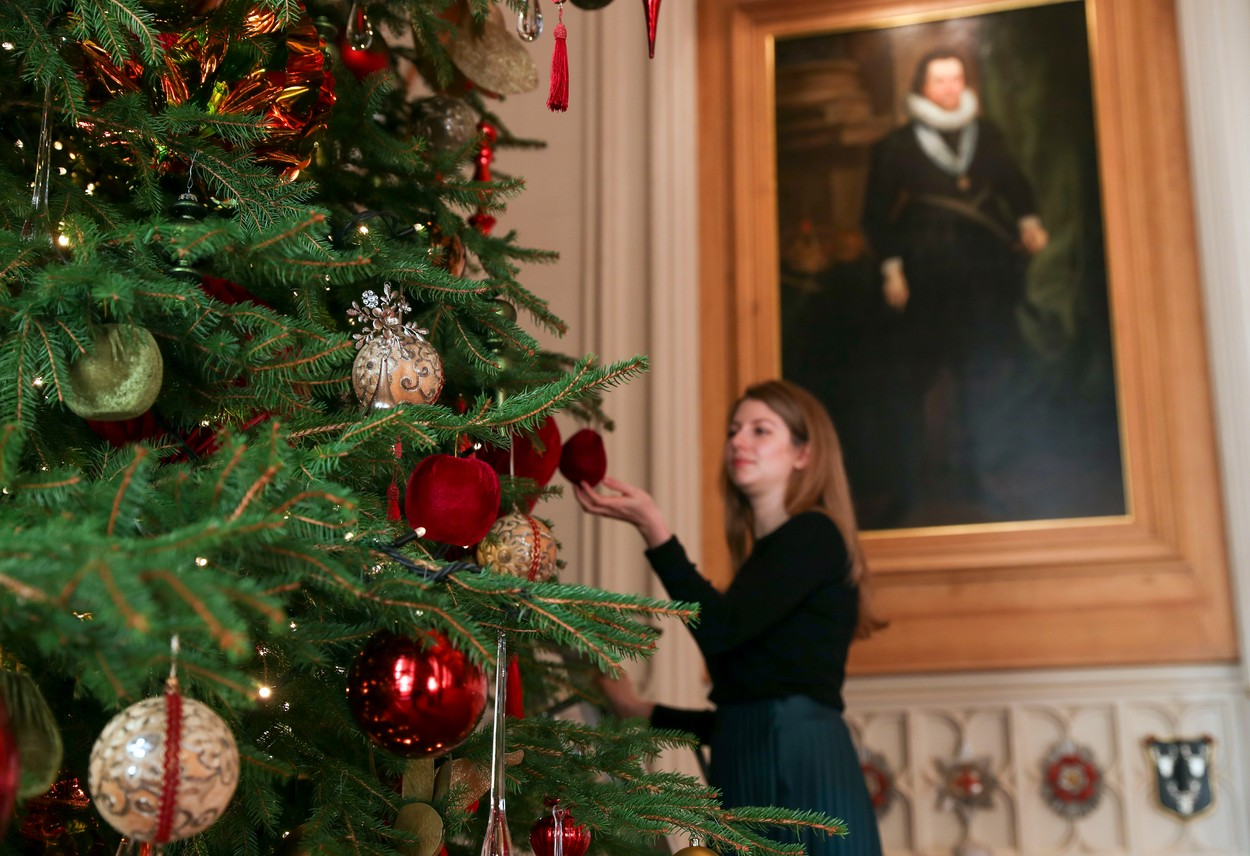 A Royal Collection Trust member of staff puts the finishing touches to a 20ft Nordmann fir tree, sourced from the Windsor Great Park, in St George's Hall at Windsor Castle, Berkshire., Image: 485469583, License: Rights-managed, Restrictions: , Model Release: no, Credit line: Steve Parsons / PA Images / Profimedia