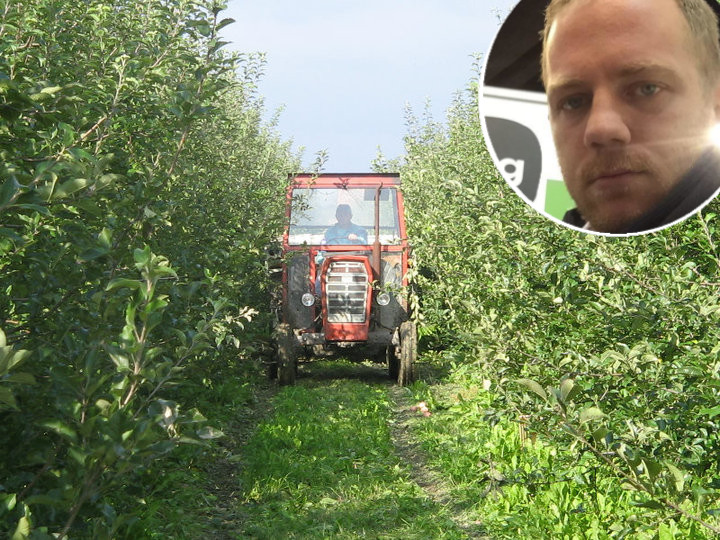 Plantaža jabuka OPG Jub i Alojs Jug u krugu