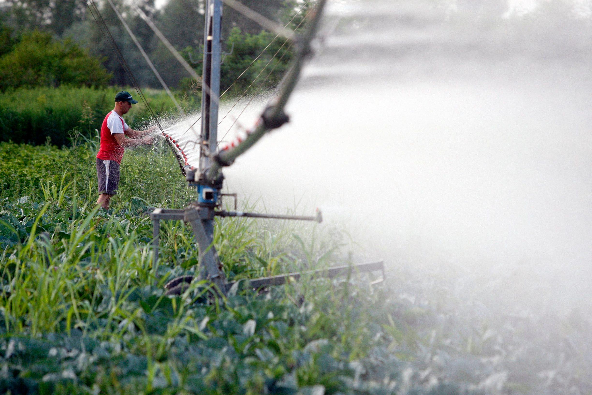Trenutno se u Hrvatskoj navodnjava oko 20.000 ha ili oko 2% obradivih poljoprivrednih površina