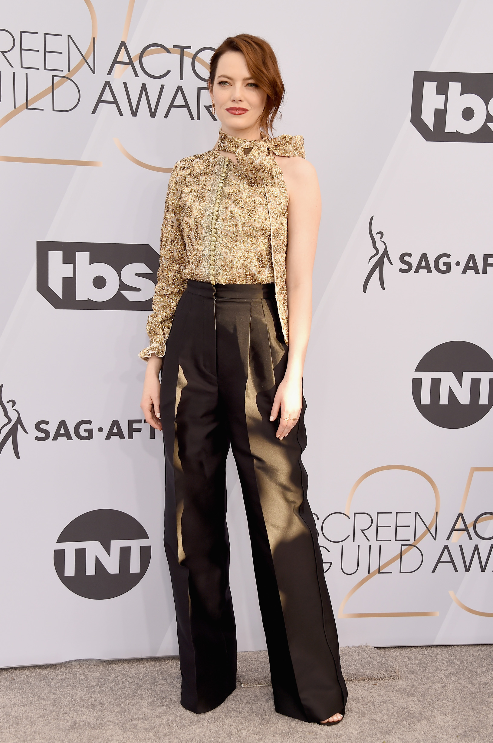 LOS ANGELES, CA - JANUARY 27:  Emma Stone attends the 25th Annual Screen ActorsGuild Awards at The Shrine Auditorium on January 27, 2019 in Los Angeles, California. 480645  (Photo by Gregg DeGuire/Getty Images for Turner)