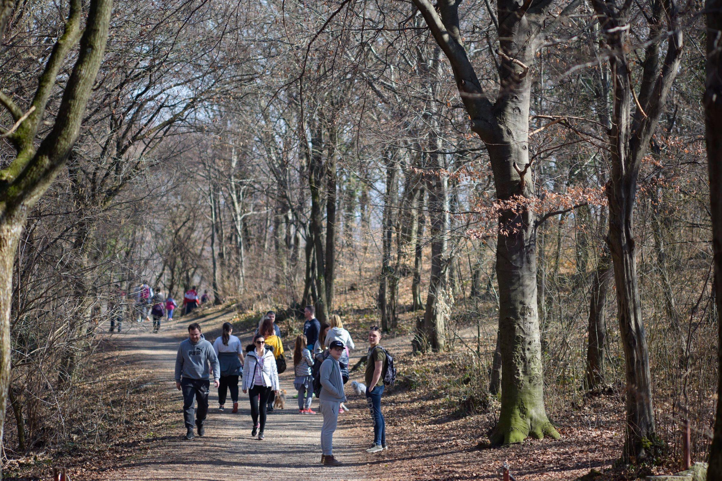 Zagreb, 040319. Park prirode Medvednica. Planinarska staza od Gornjeg Stenjevca do Ponikva na Medvednici. Foto: Darko Tomas / CROPIX