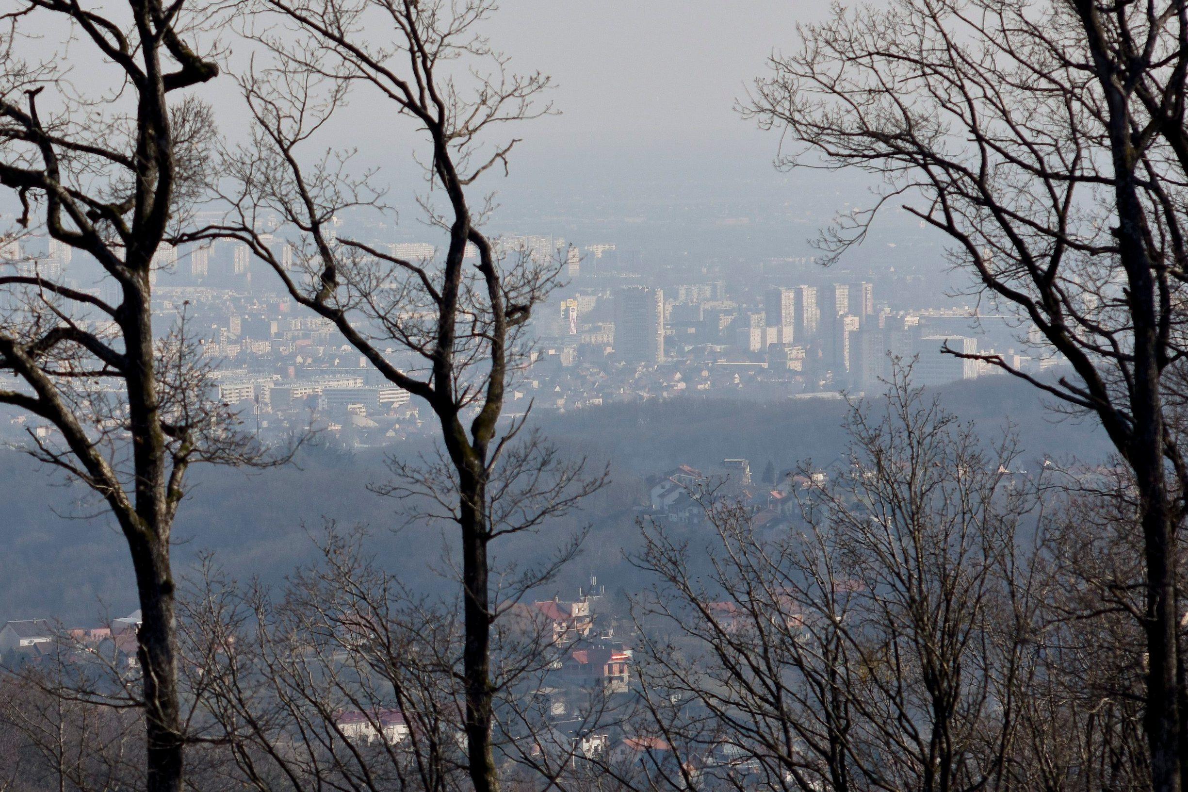 Zagreb, 240219. Medvednica. Priroda zagrebackog brda, Medvednice na samom pragu proljeca. Foto: Darko Tomas / CROPIX
