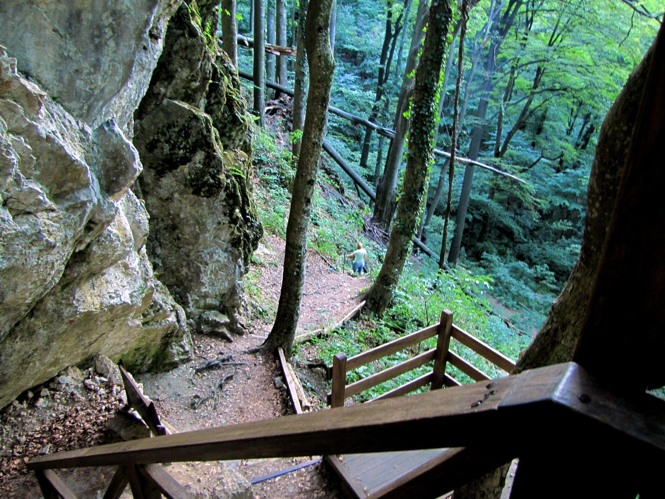 Jankovac, 070812. Grof Josip Jankovic, vlasnik tada brojnih posjeda od Vocina do Virovitice, zaljubljenik u prirodu, dosao je sredinom 19. stoljeca na ovaj posjed, odlucivsi svoje zrele godine provesti uredjujuci jednu lijepu dolinu blizu vrha Papuka. Napustio je raskosan zivot u Becu i kao samac zivio na Papuku do 1862. Prvo je sagradio lovacki dvorac, potom dva protocna jezera, za uzgoj pastrva i za vodoopskrbu. Do mauzoleja grofa Jankovica vodi strma staza. Foto: Zeljko Muzevic / CROPIX